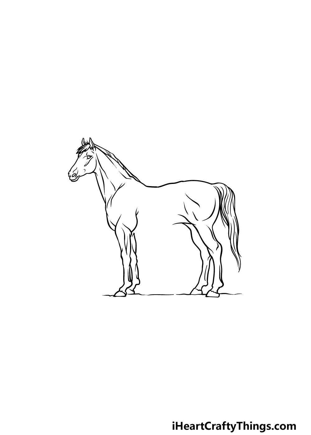 drawing a horse step 4