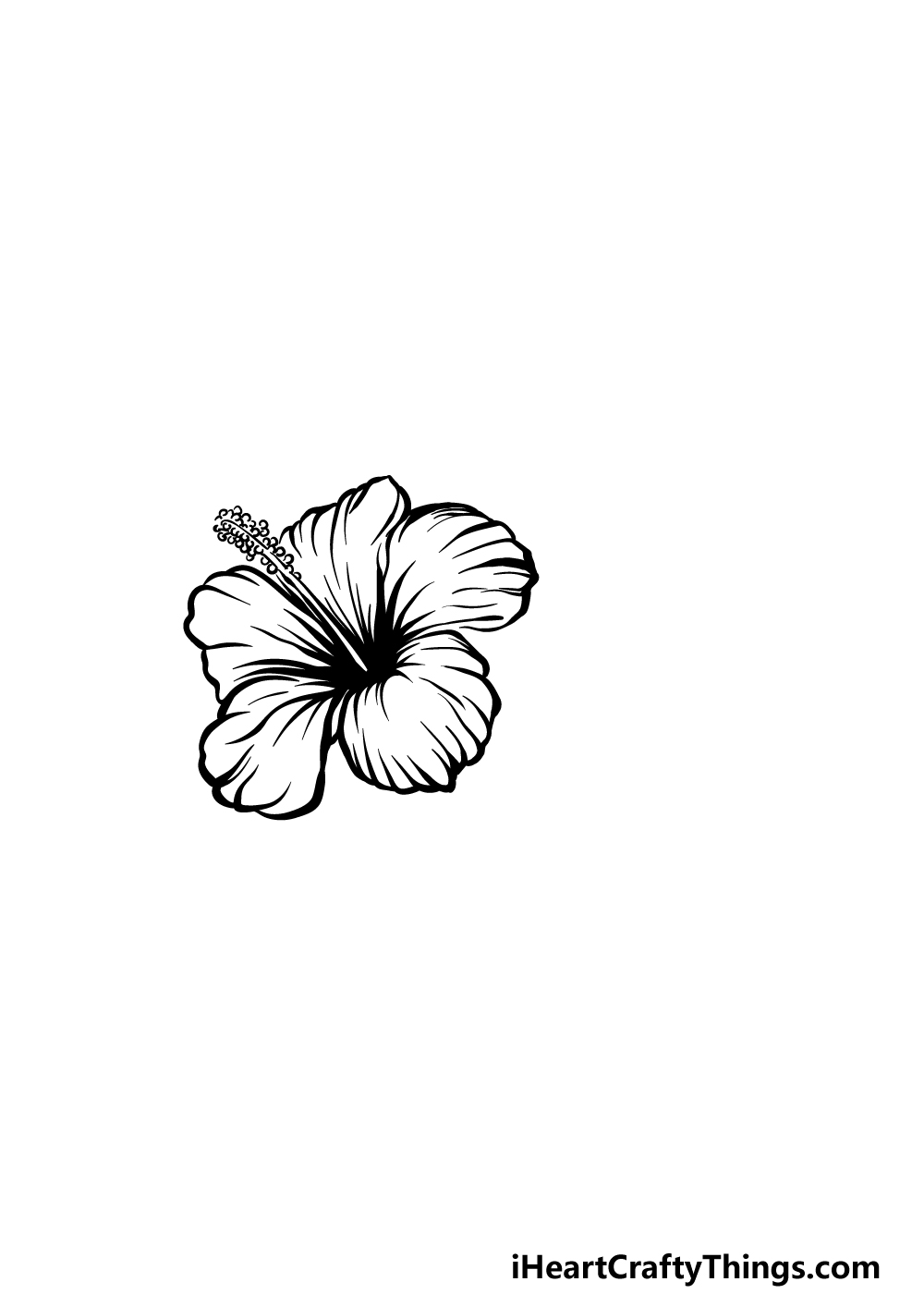 drawing hibiscus step 4