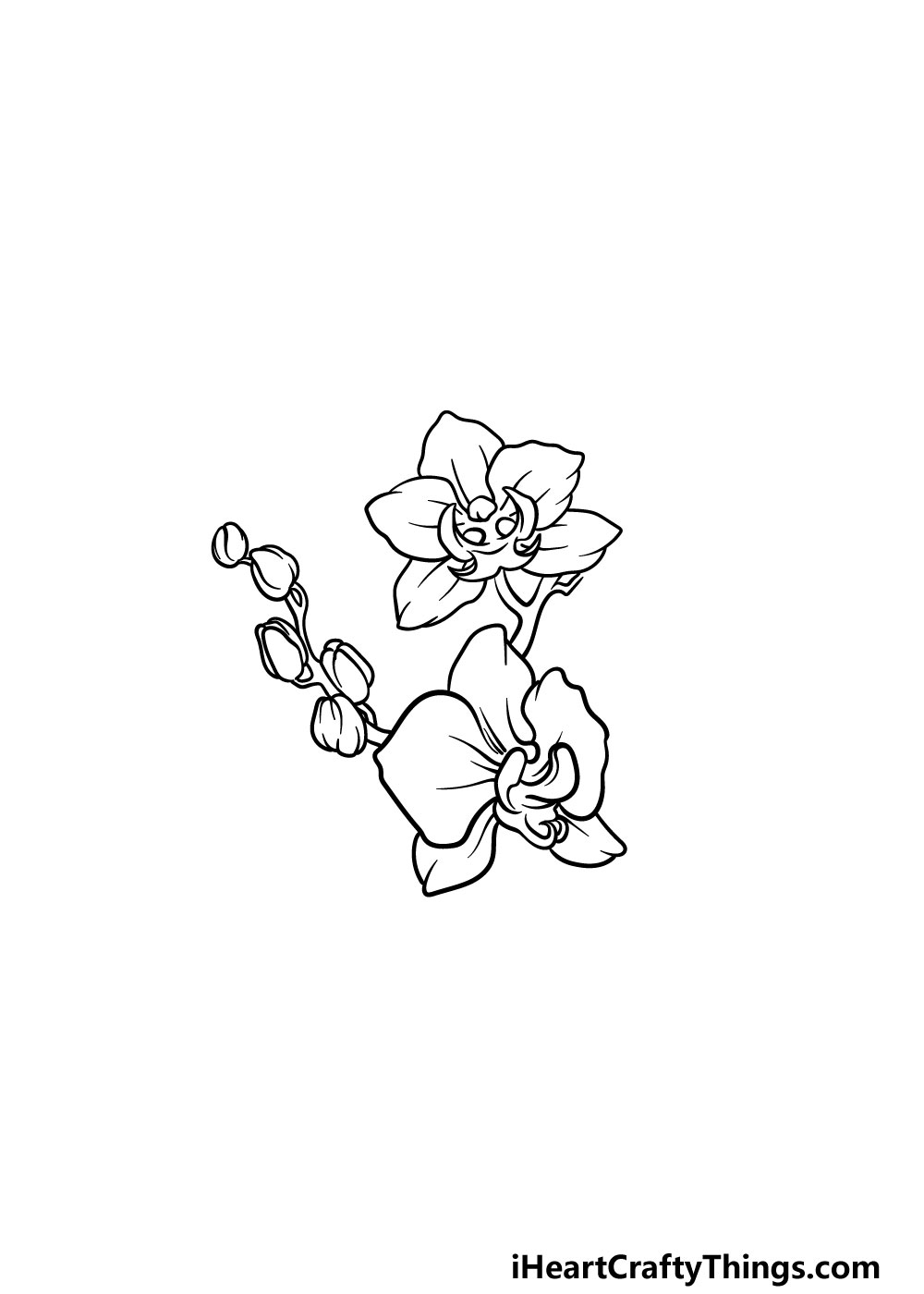 drawing an orchid step 4
