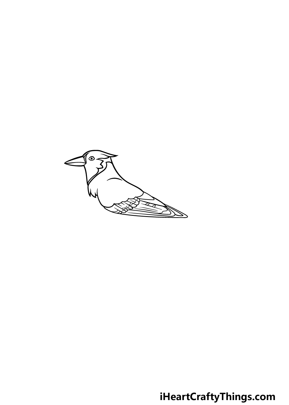 drawing a blue jay step 4
