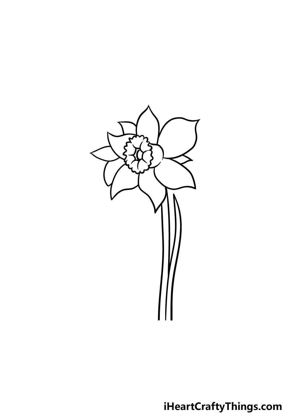 drawing a daffodil step 4