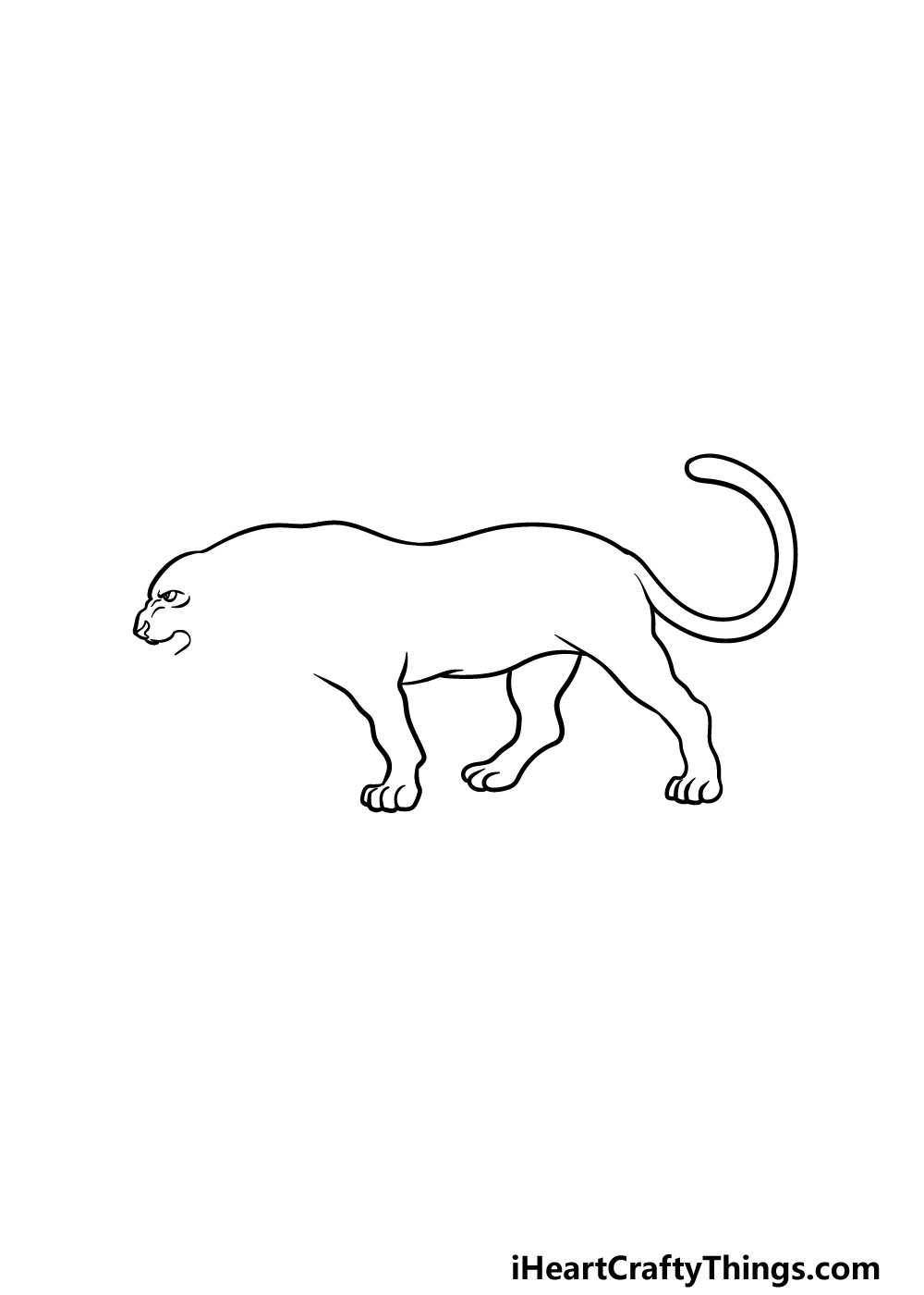 drawing a panther step 4