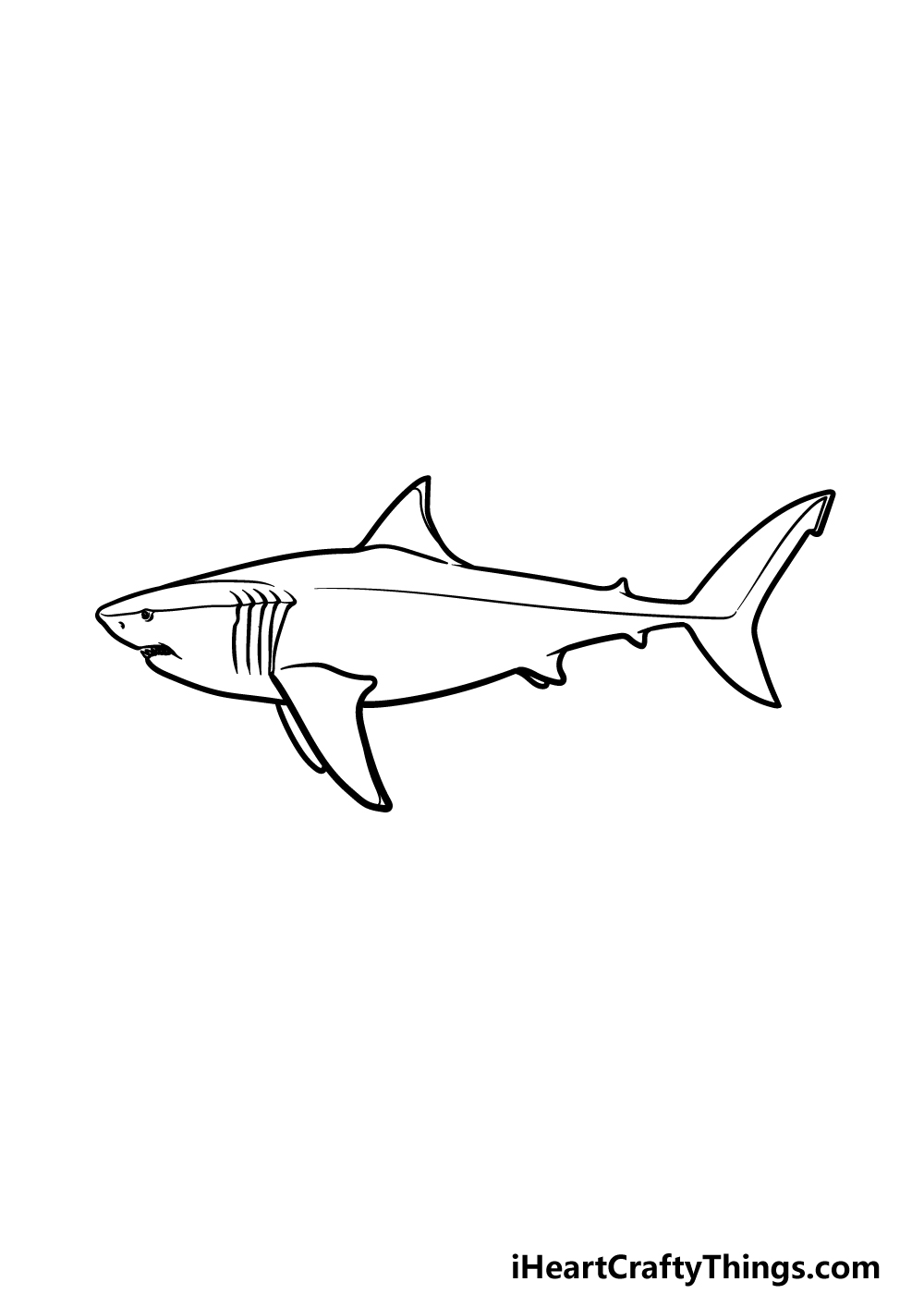 drawing a megalodon step 4