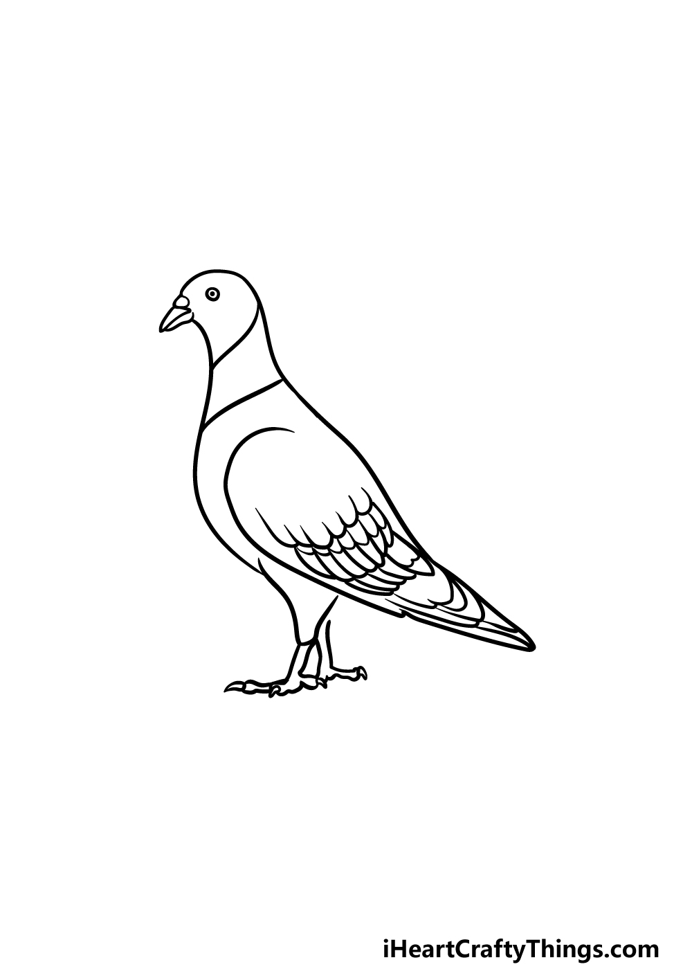 drawing a pigeon step 4