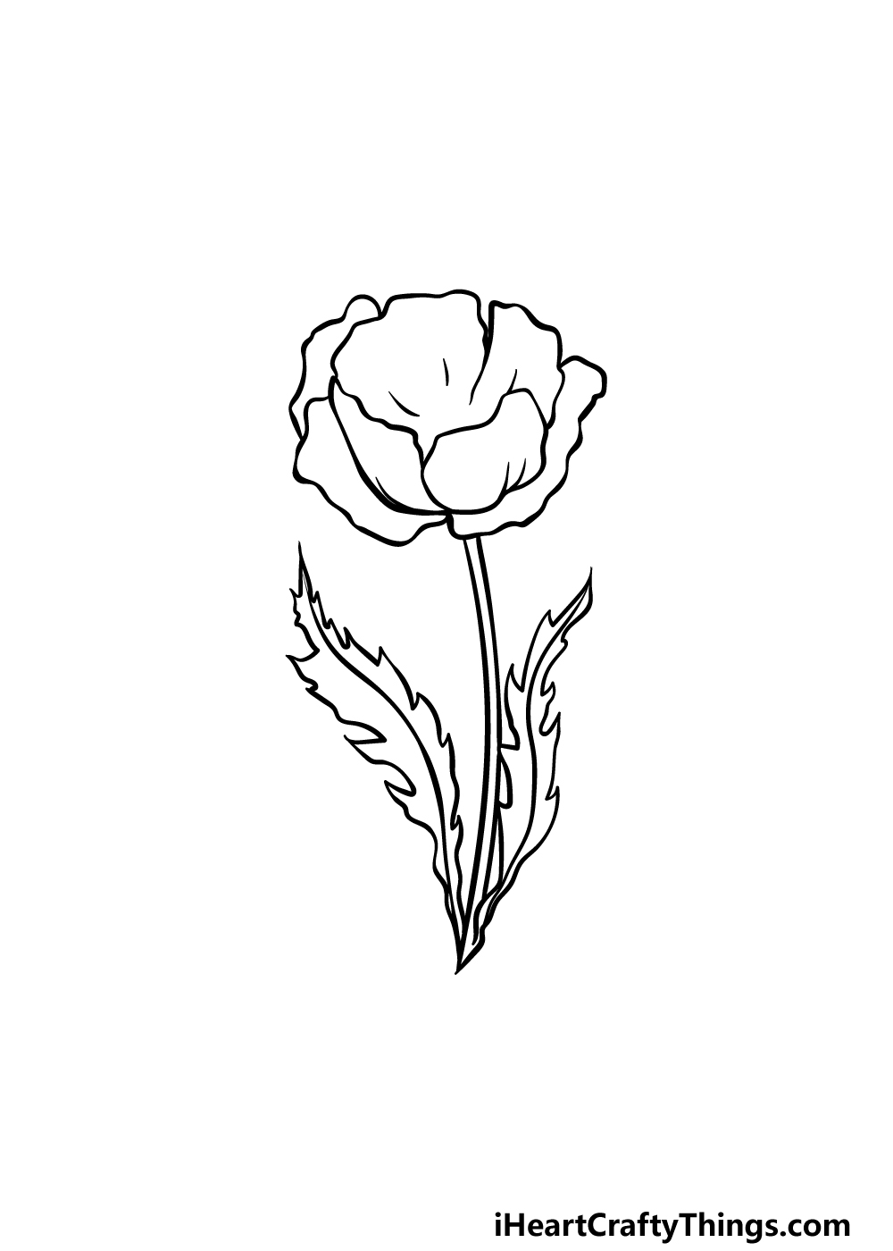 drawing a poppy step 4