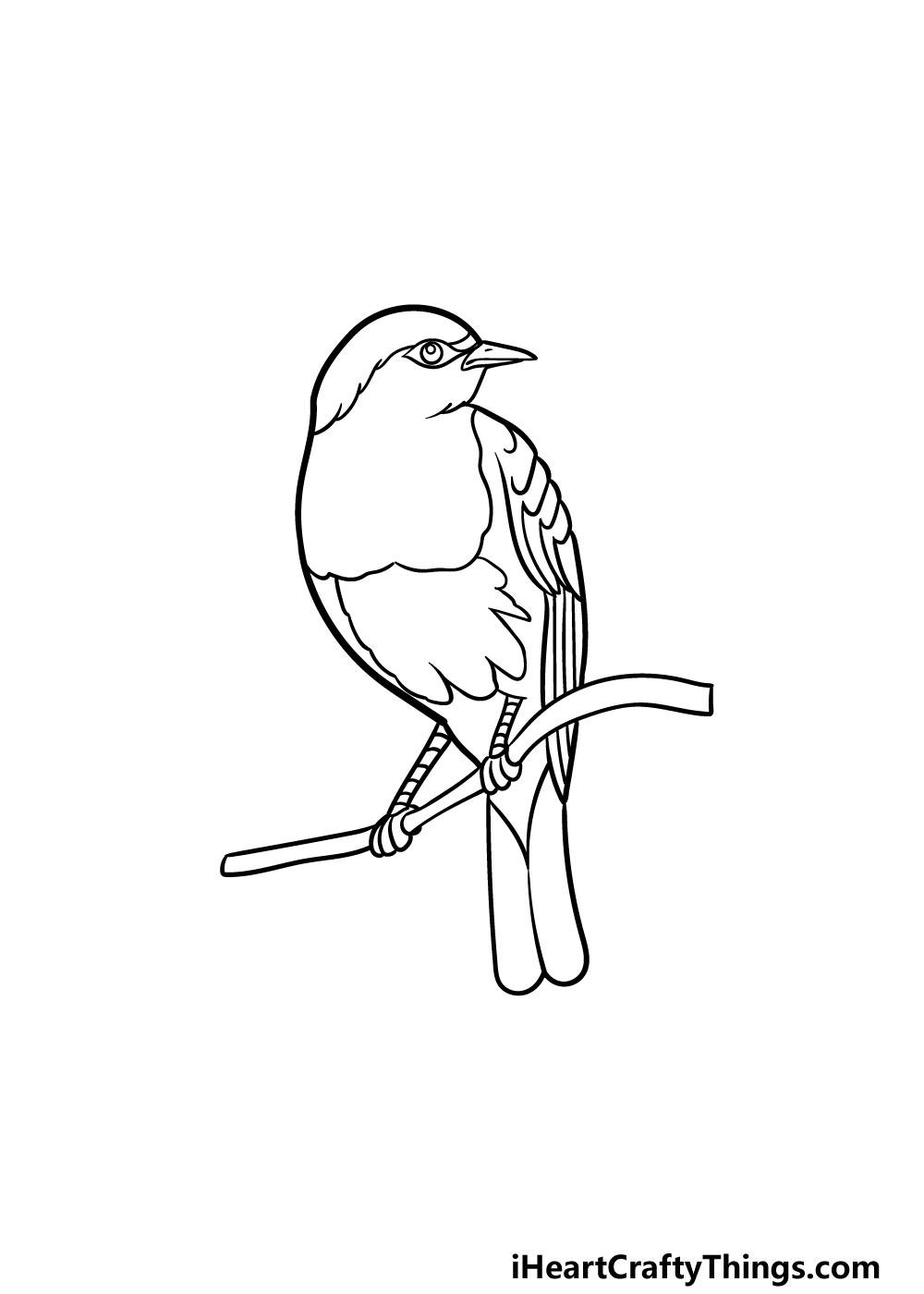 drawing a robin step 5
