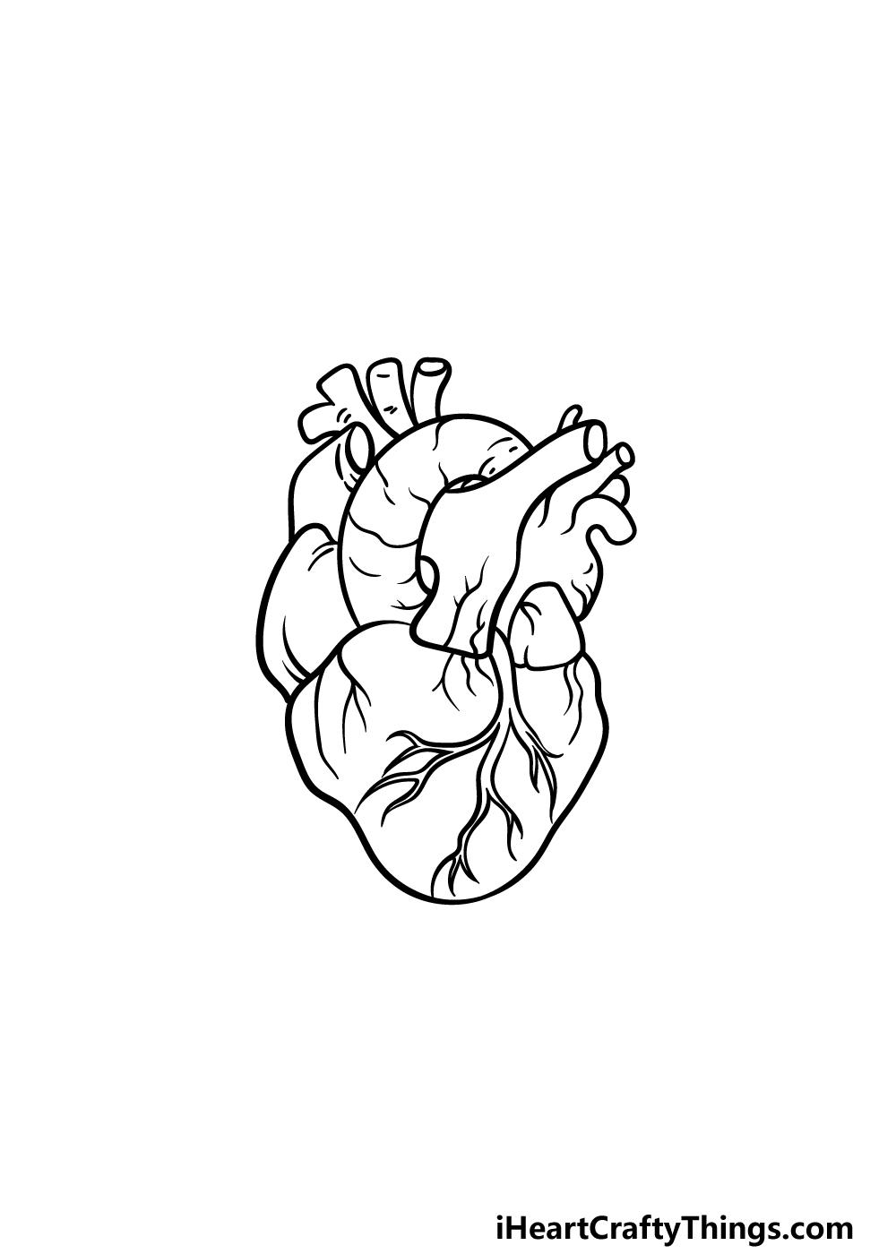 drawing a human heart step 5