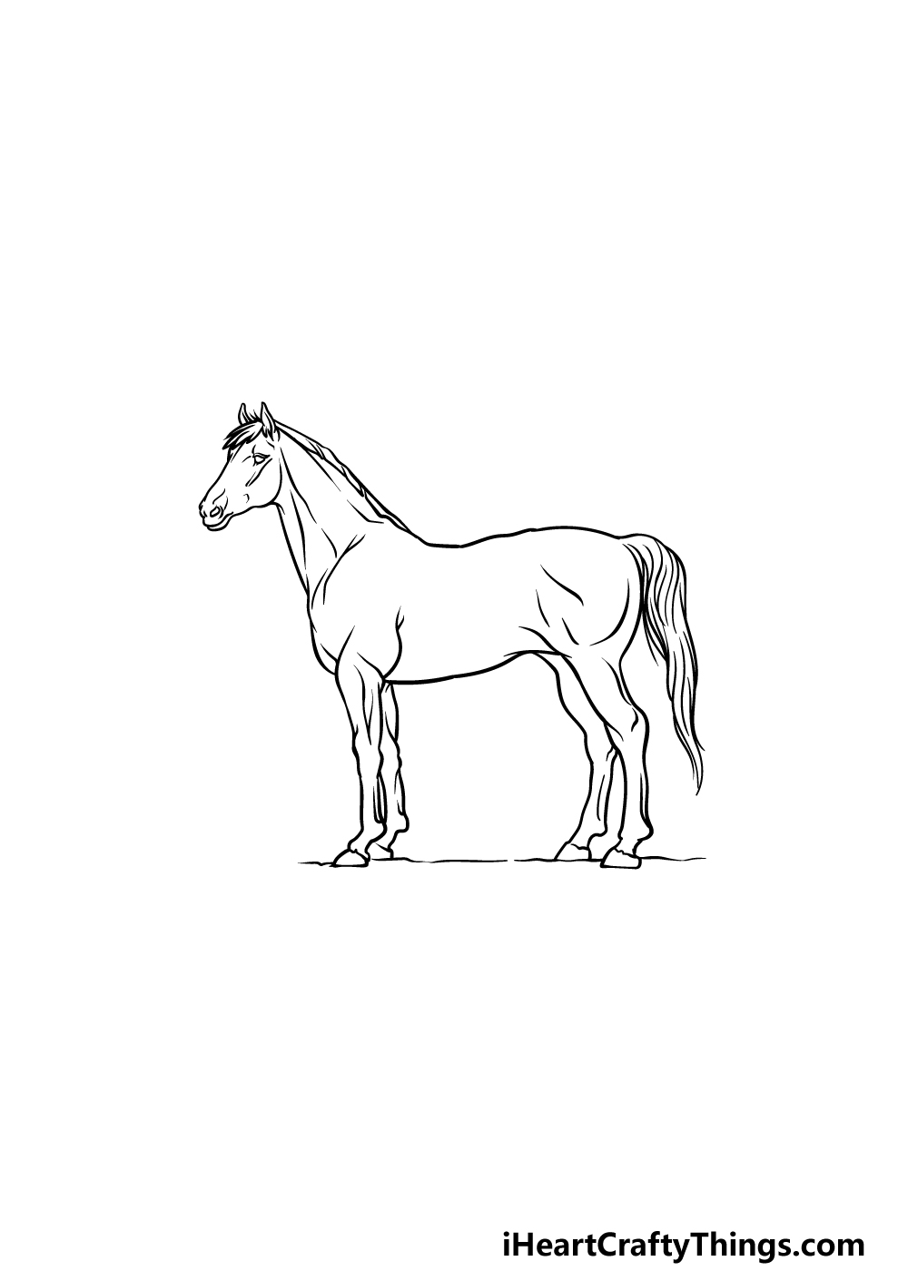 drawing a horse step 5