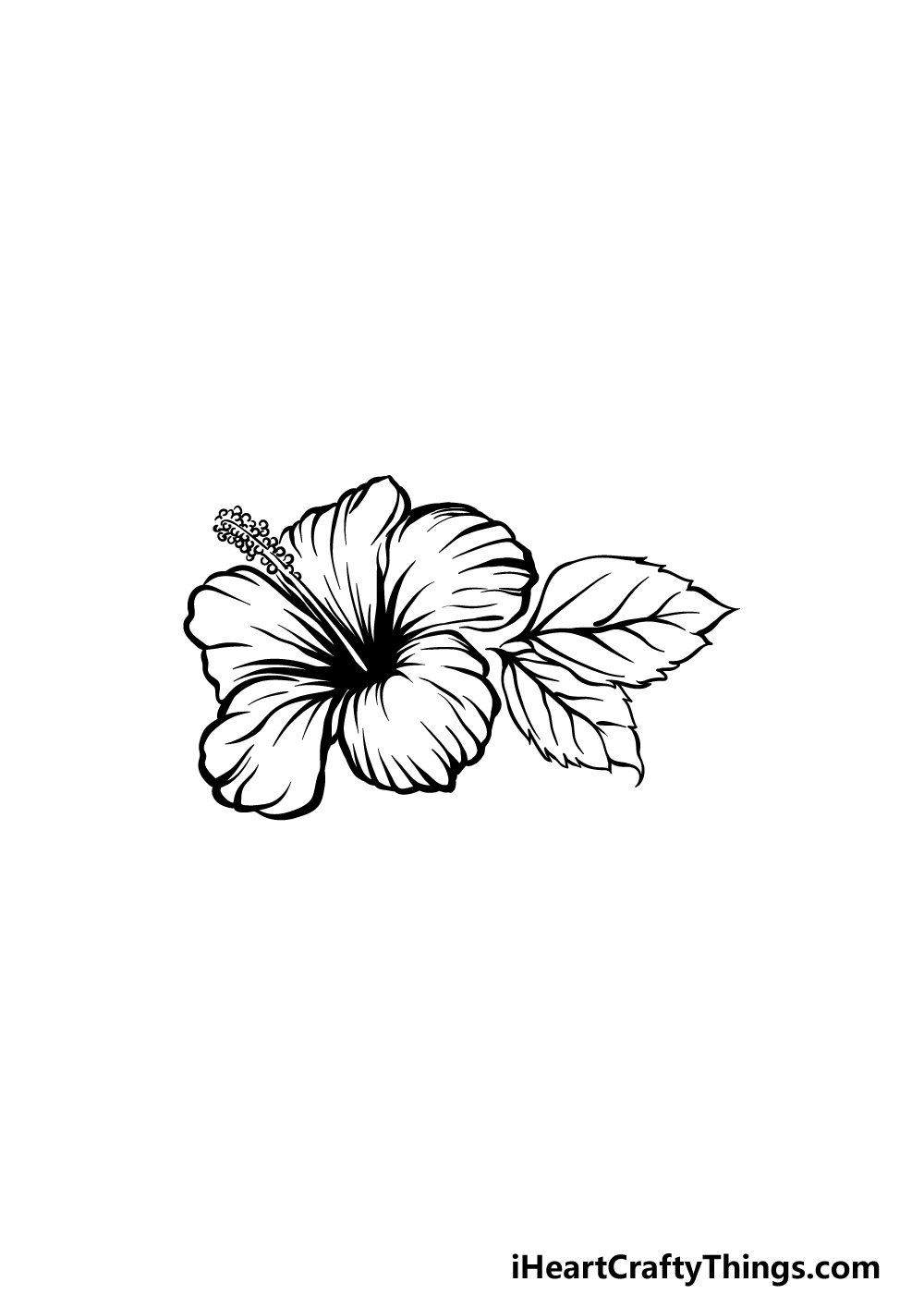 drawing hibiscus step 5