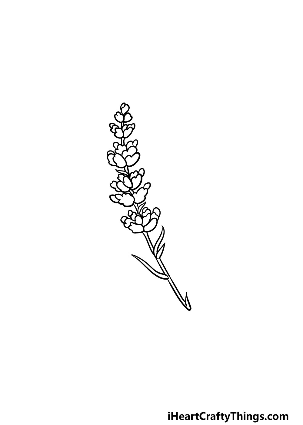drawing lavender step 5