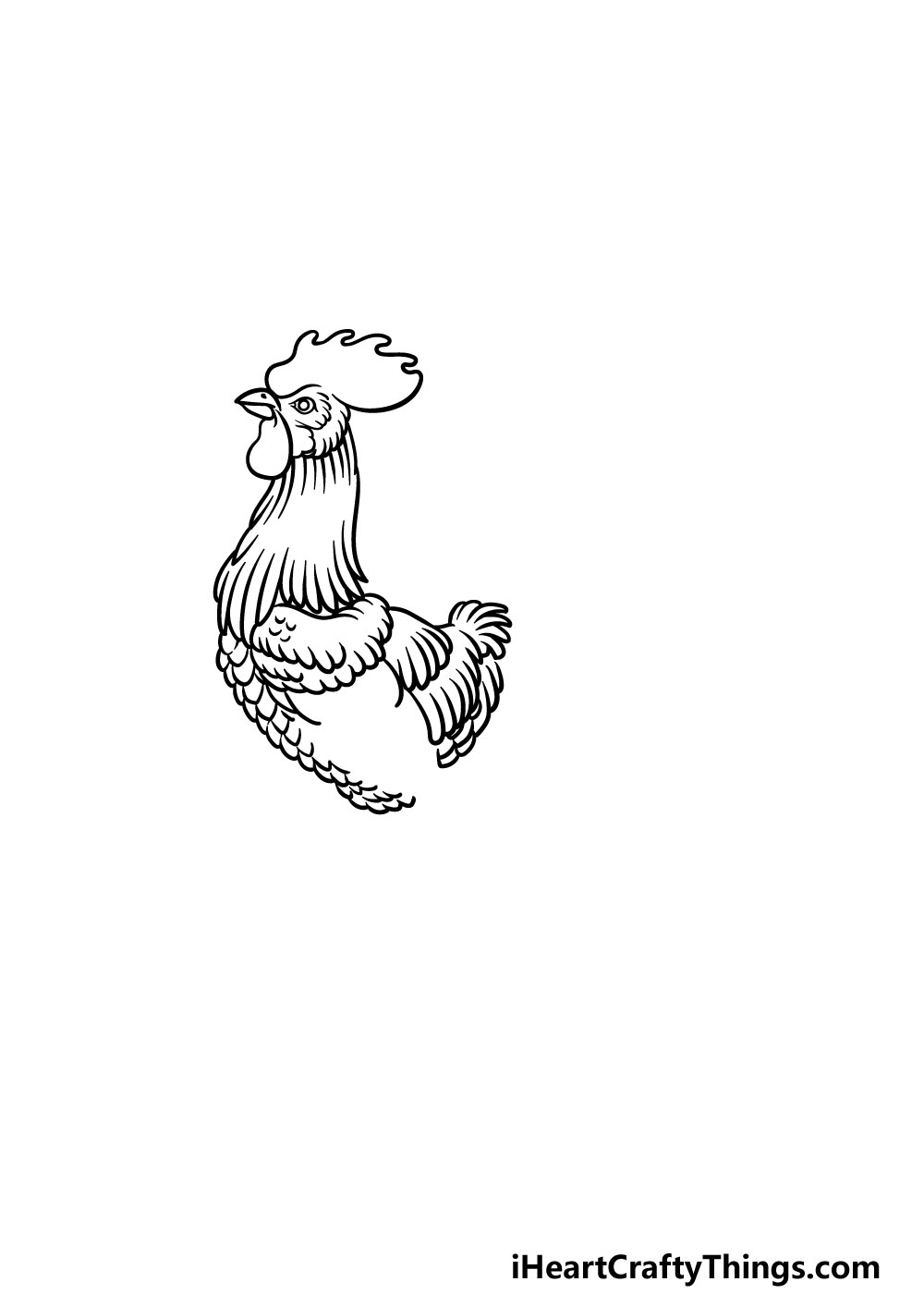 drawing a rooster step 5
