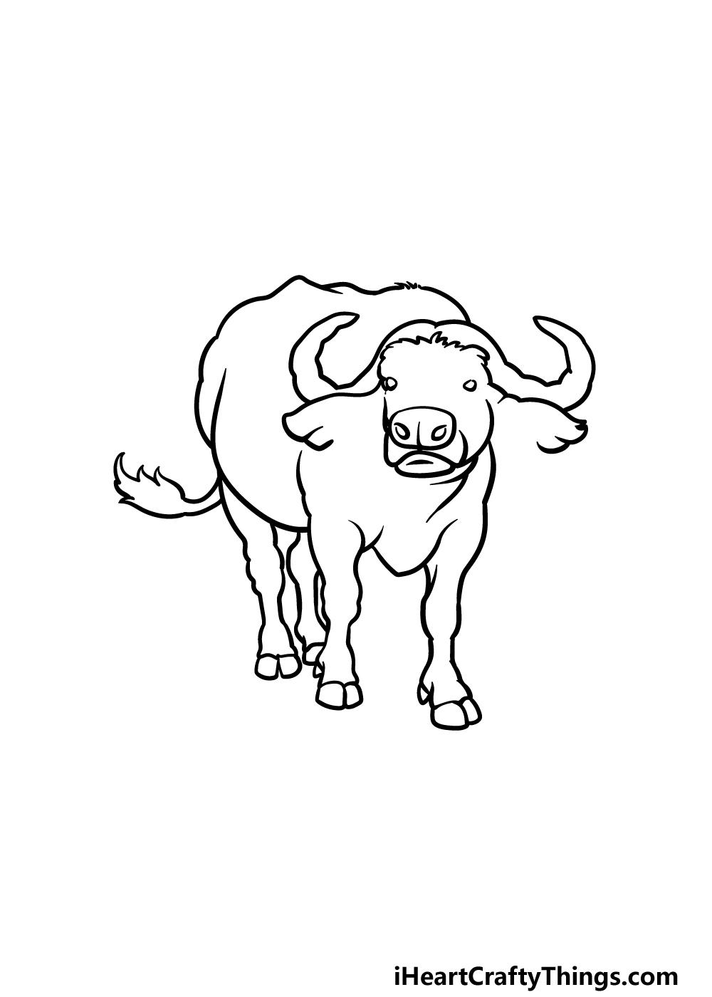 drawing buffalo step 5