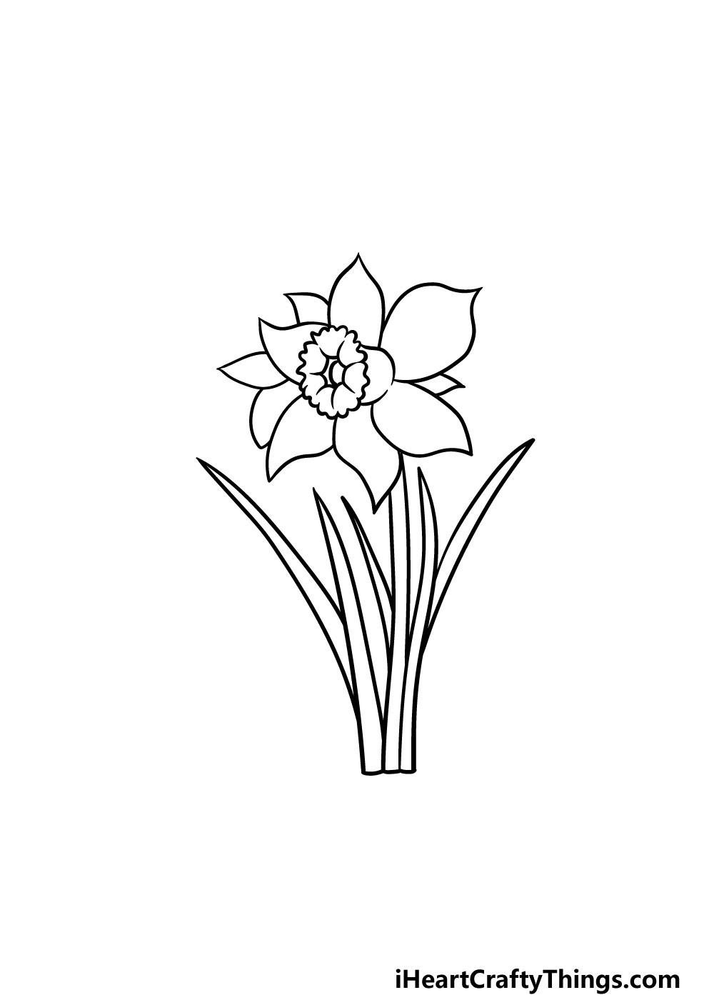 drawing a daffodil step 5
