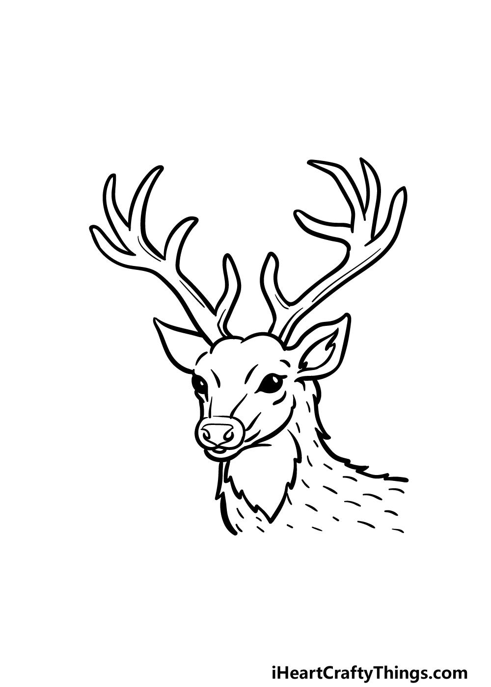 drawing deer's head step 5