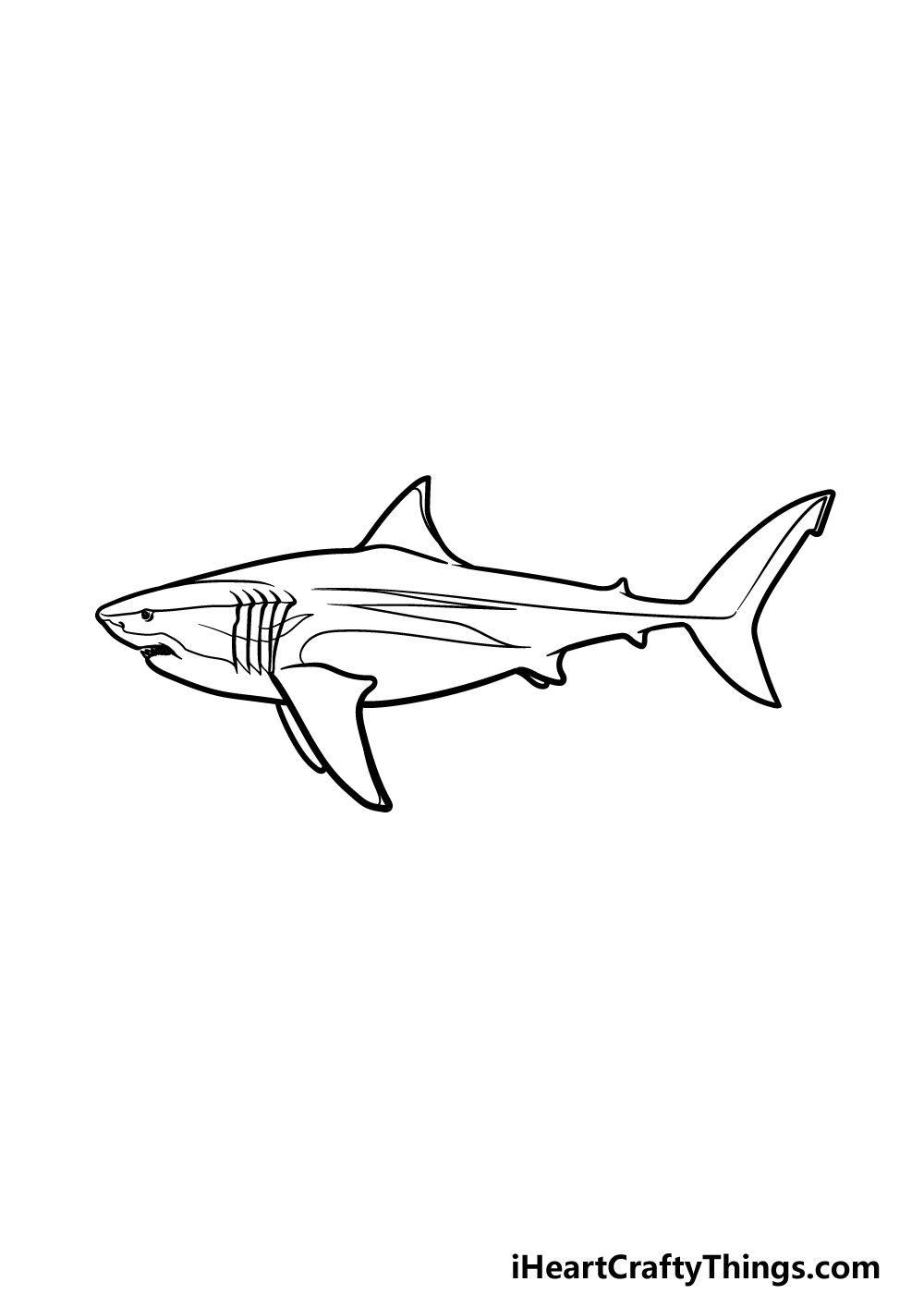 drawing a megalodon step 5