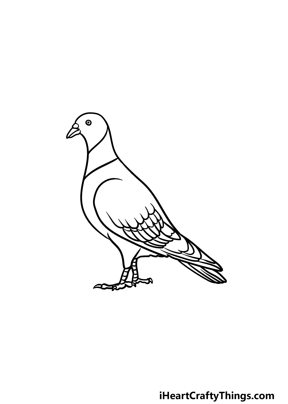 drawing a pigeon step 5