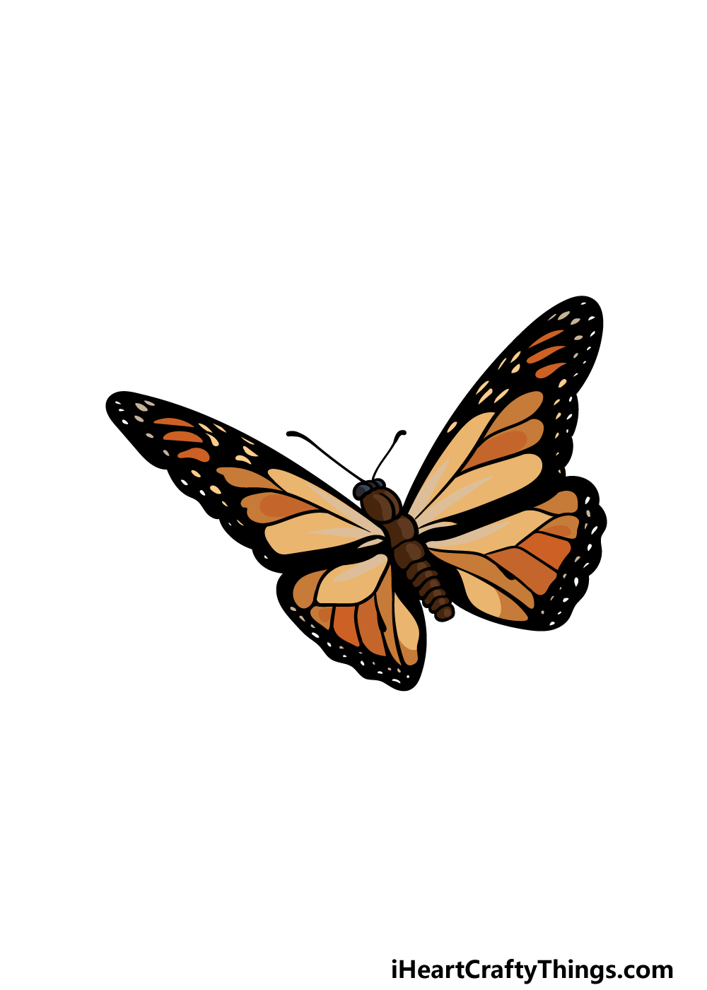 drawing  Monarch Butterfly step 6