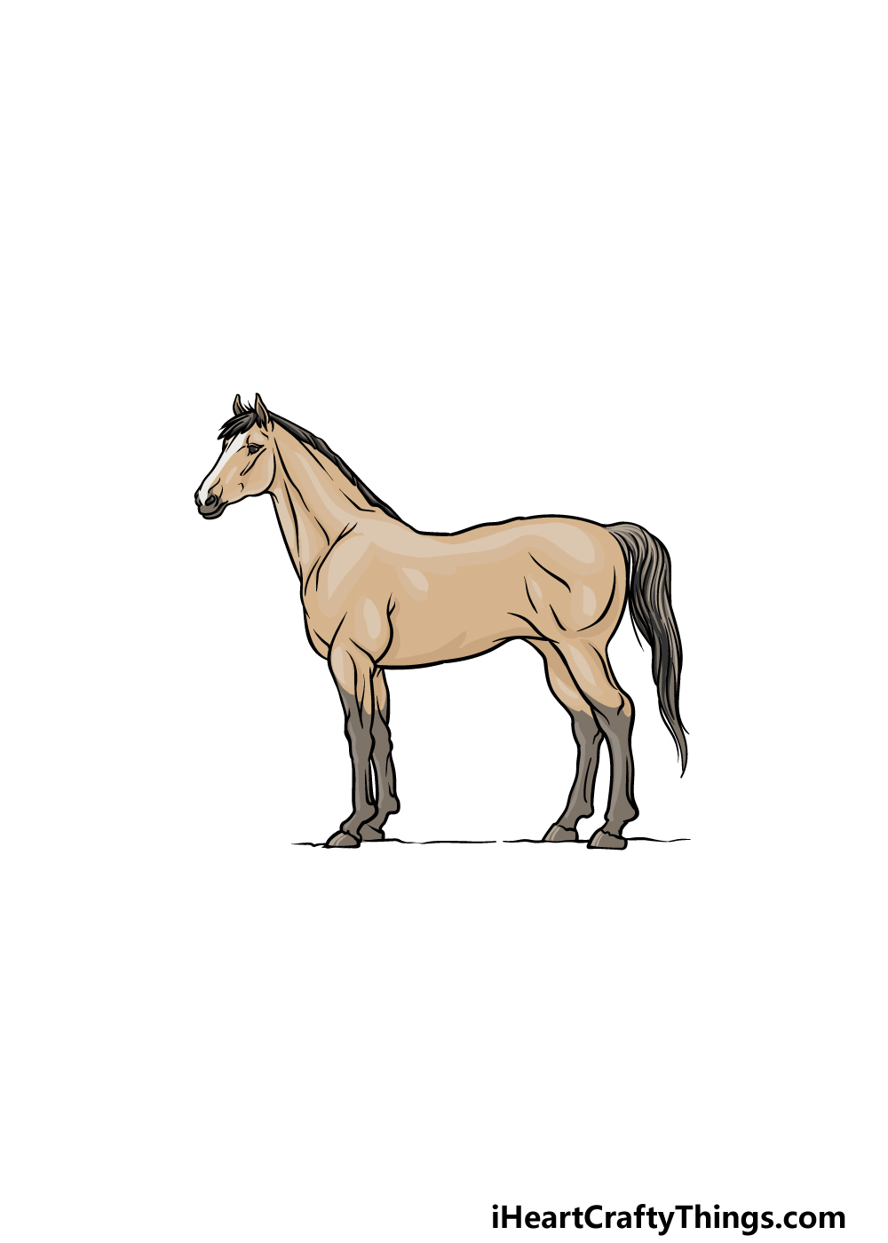 drawing a horse step 6