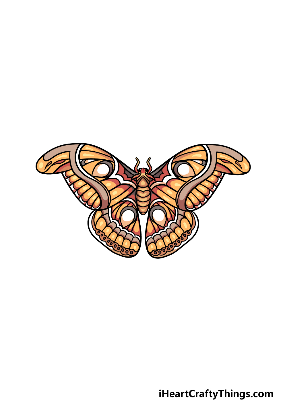 drawing a moth step 6