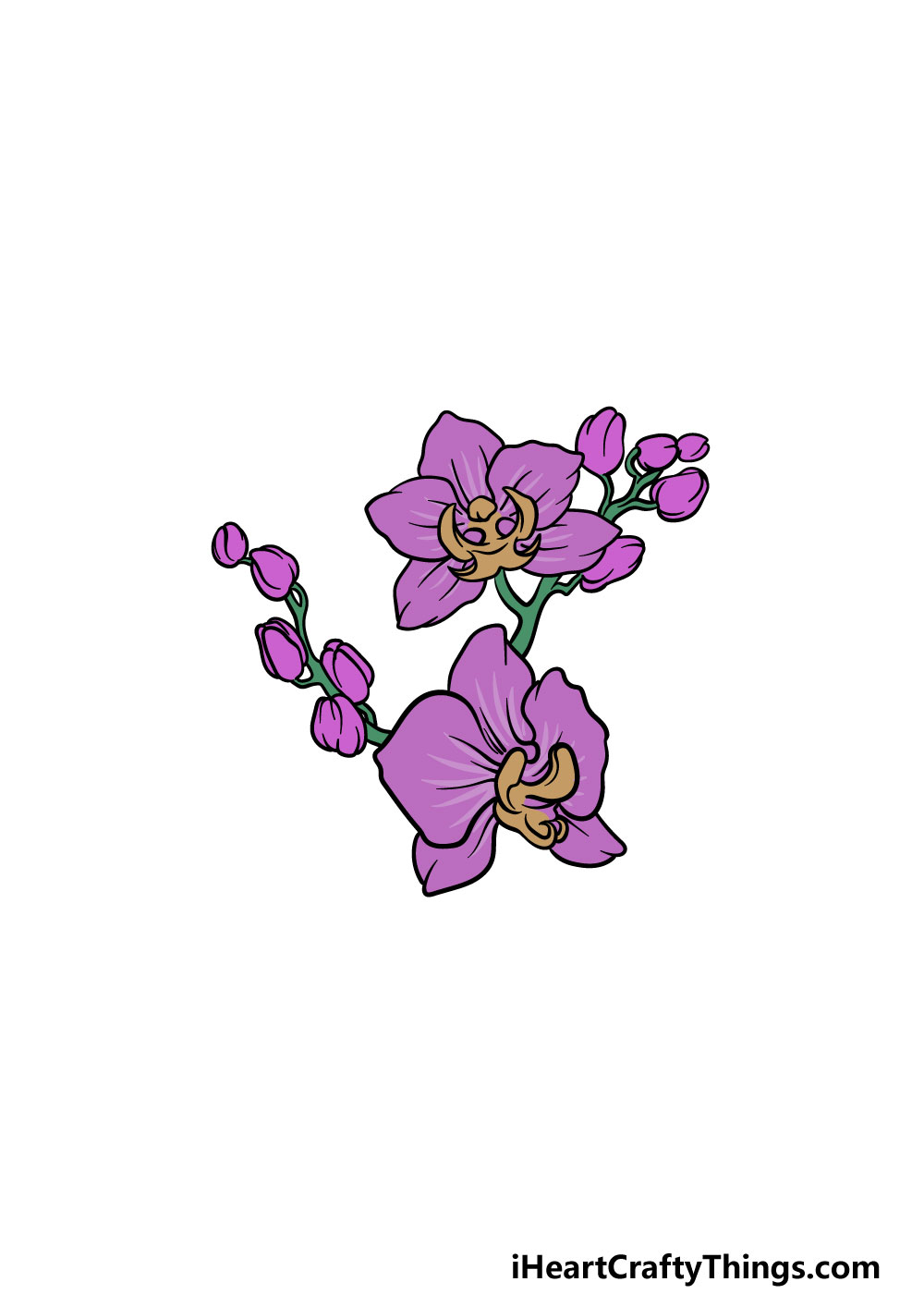 drawing an orchid step 6