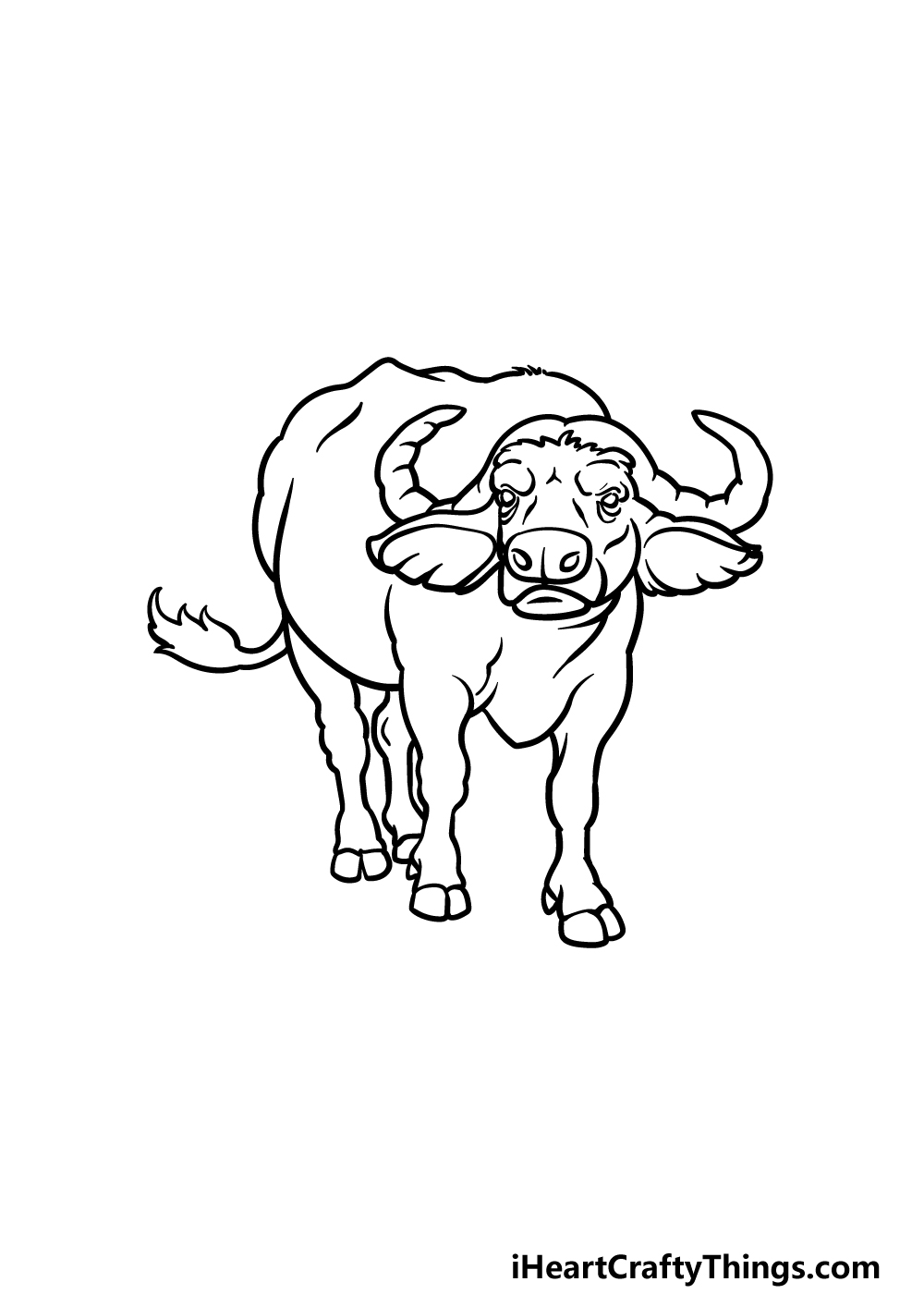 drawing buffalo step 6