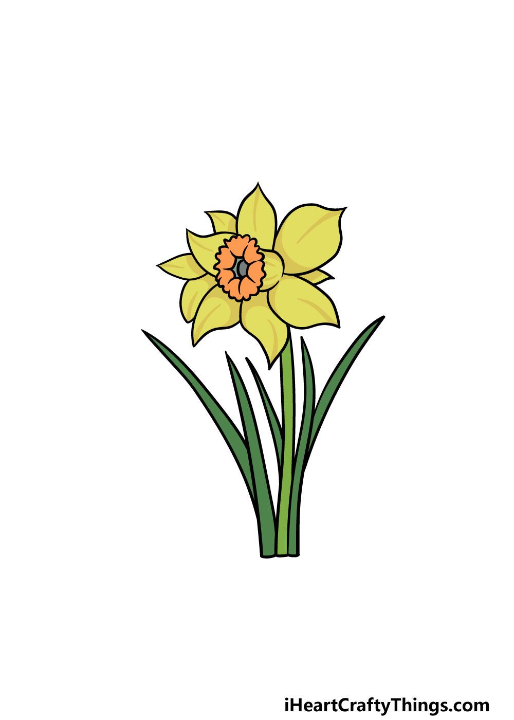 drawing a daffodil step 6