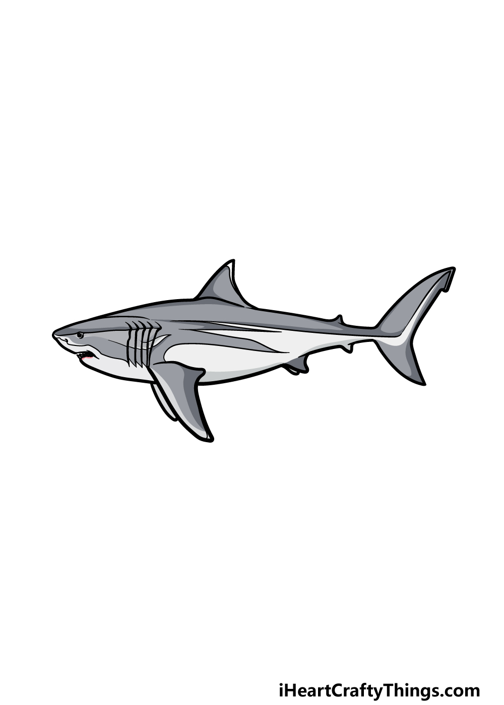 drawing a megalodon step 6