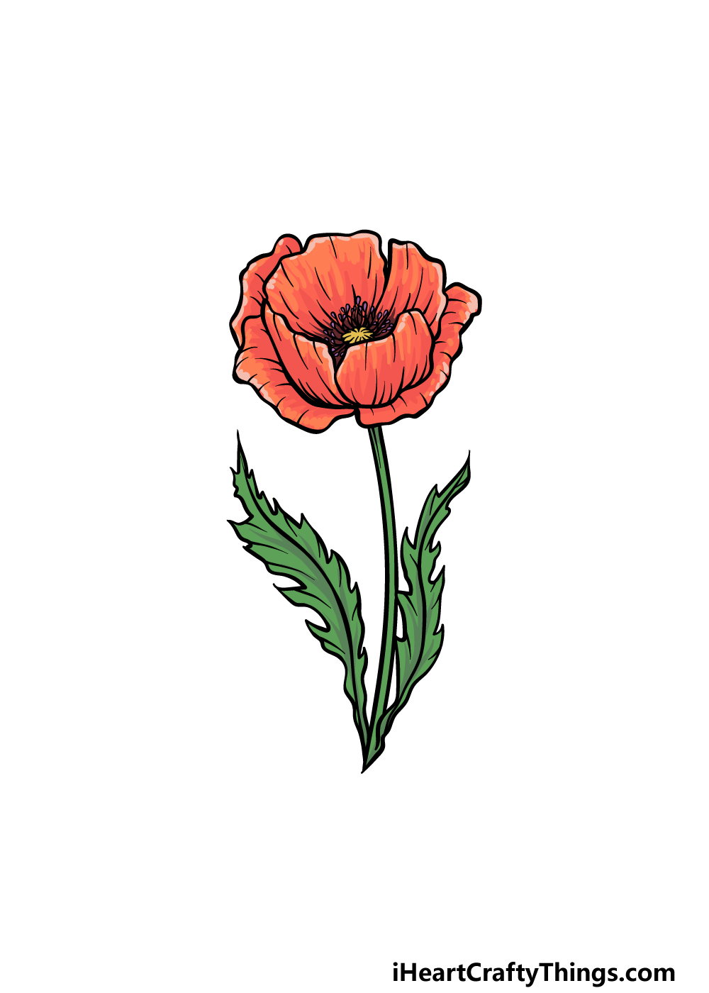 drawing a poppy step 6