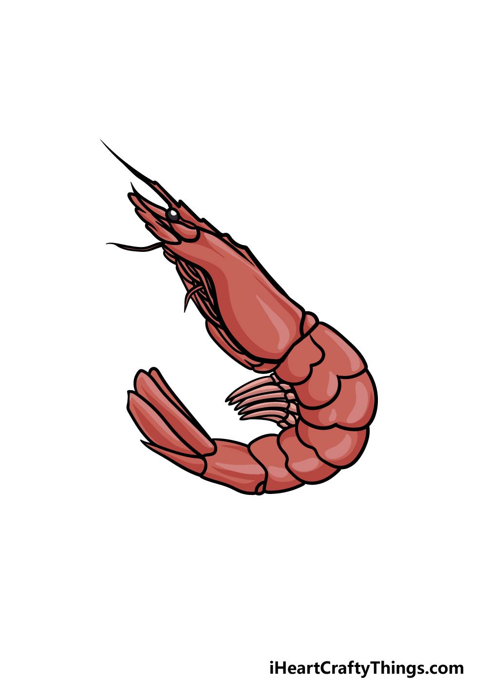drawing a shrimp step 6