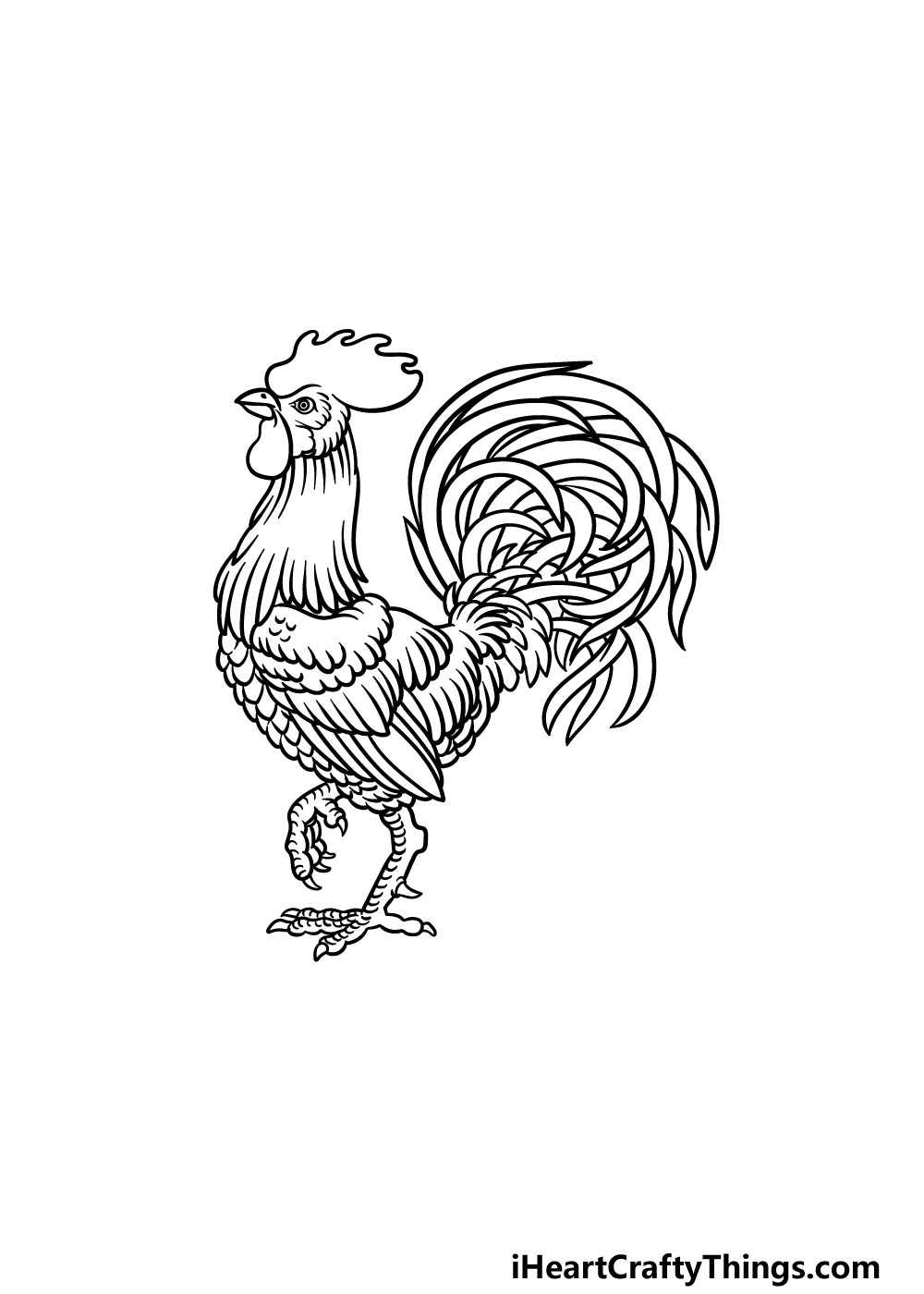 drawing a rooster step 7