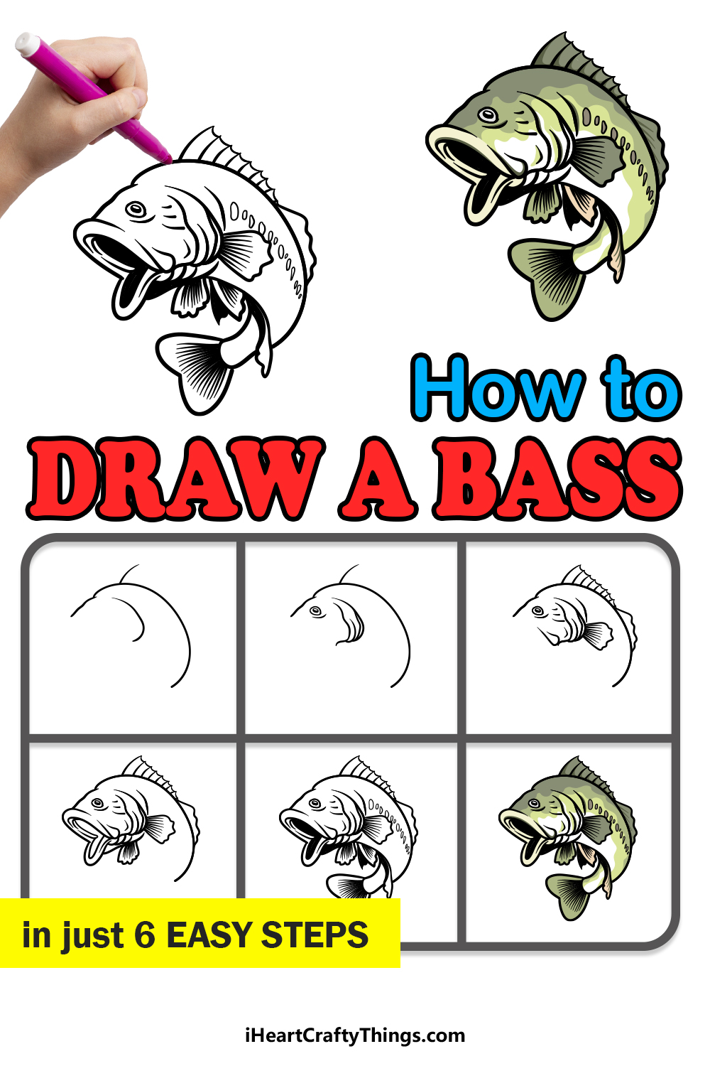 how to draw a bass in 6 easy steps