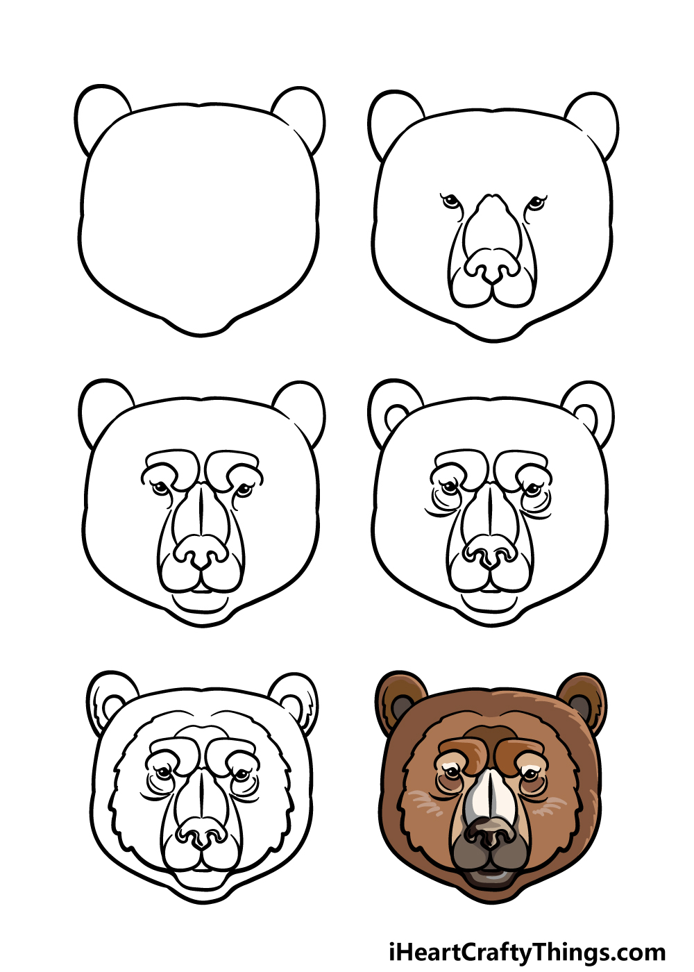 how to draw a bear face in 6 steps