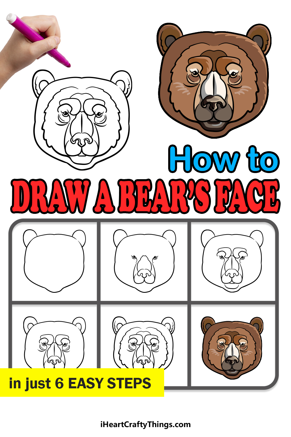 how to draw bear's face in 6 easy steps