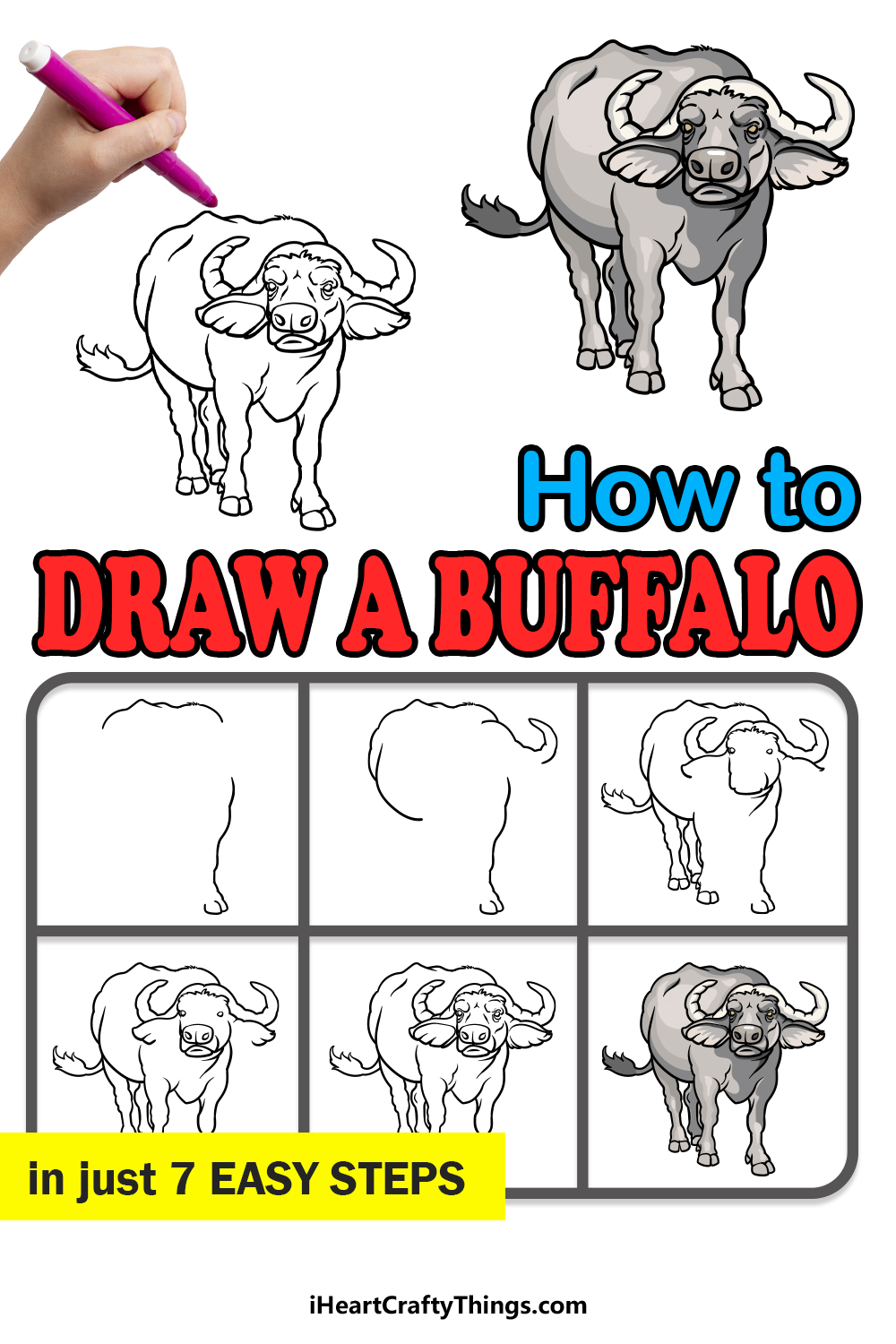 how to draw a buffalo in 7 easy steps