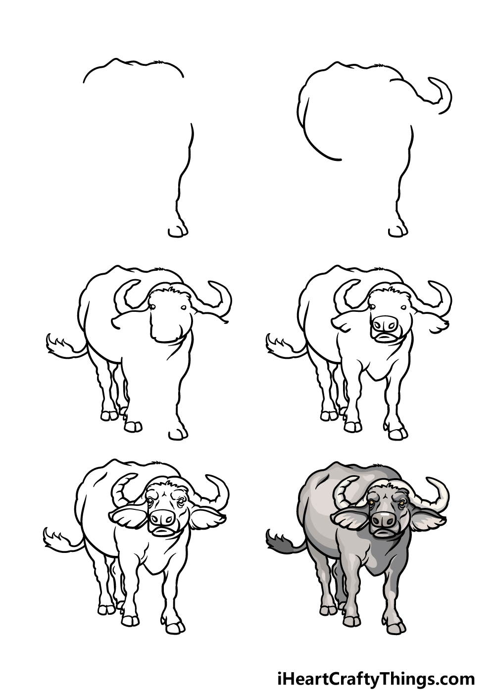 how to draw a buffalo in 7 steps