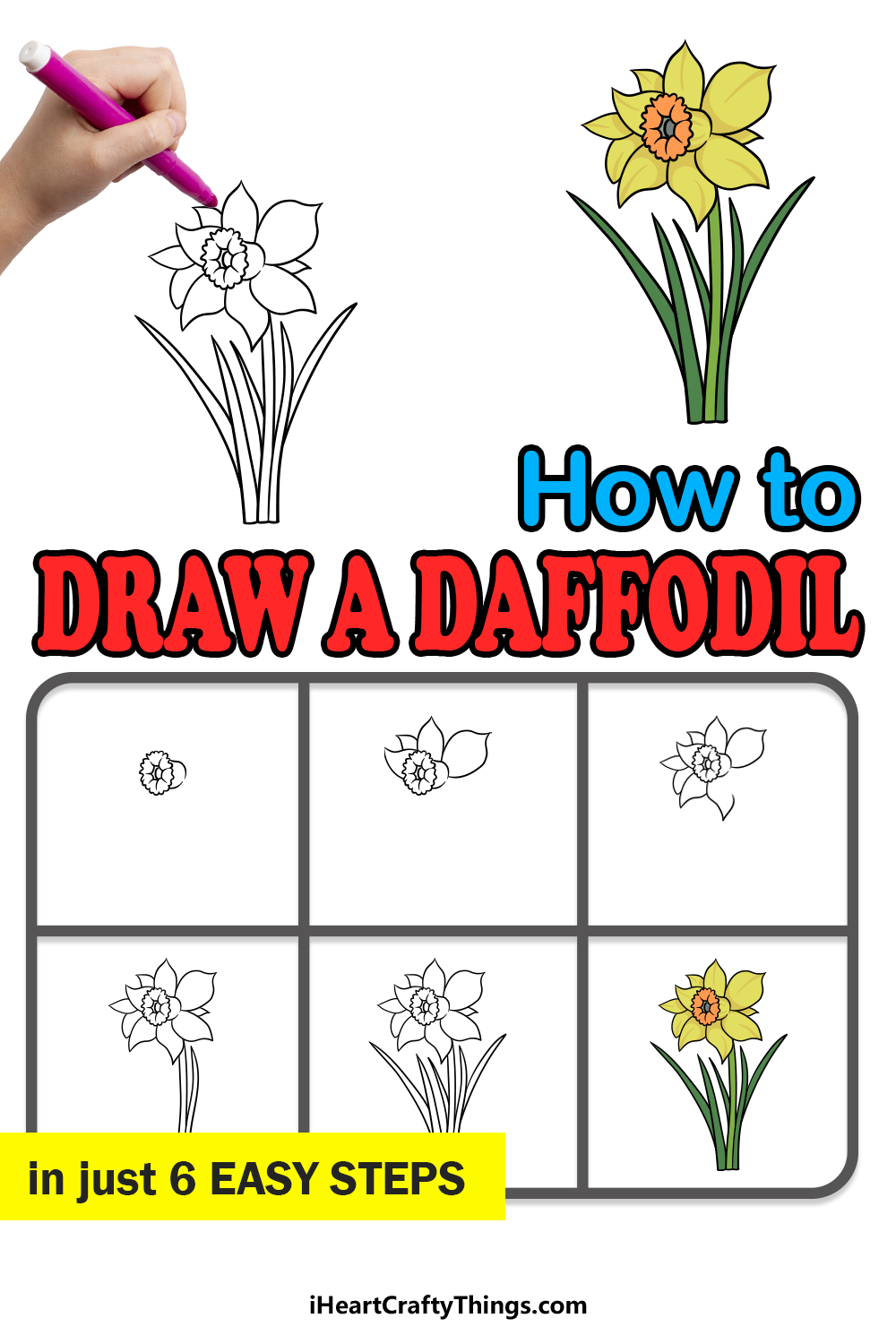 how to draw a daffodil in 6 easy steps