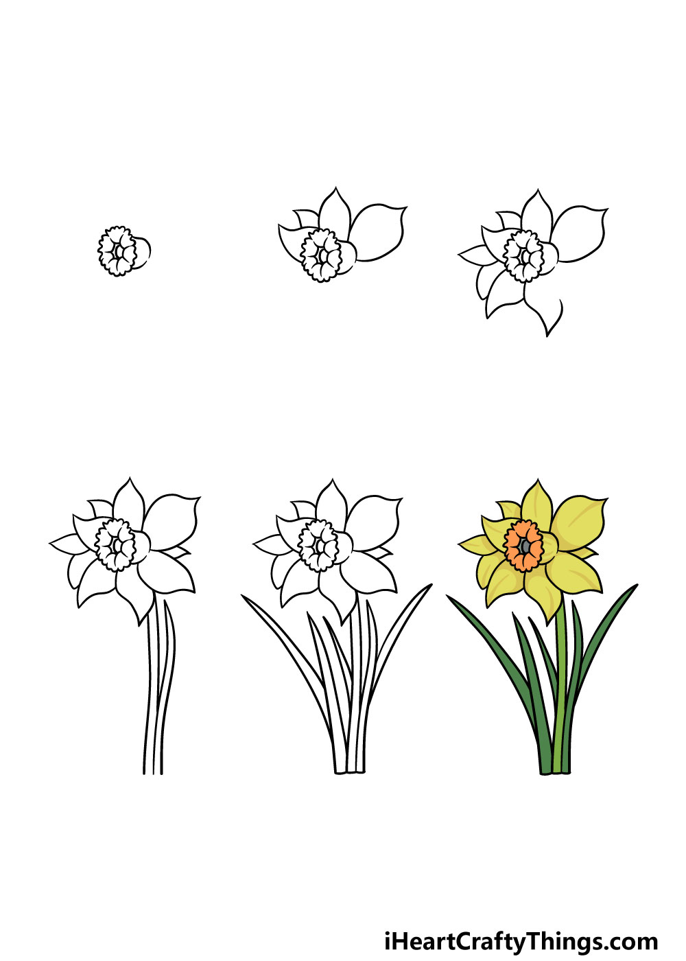 how to draw a daffodil in 6 steps