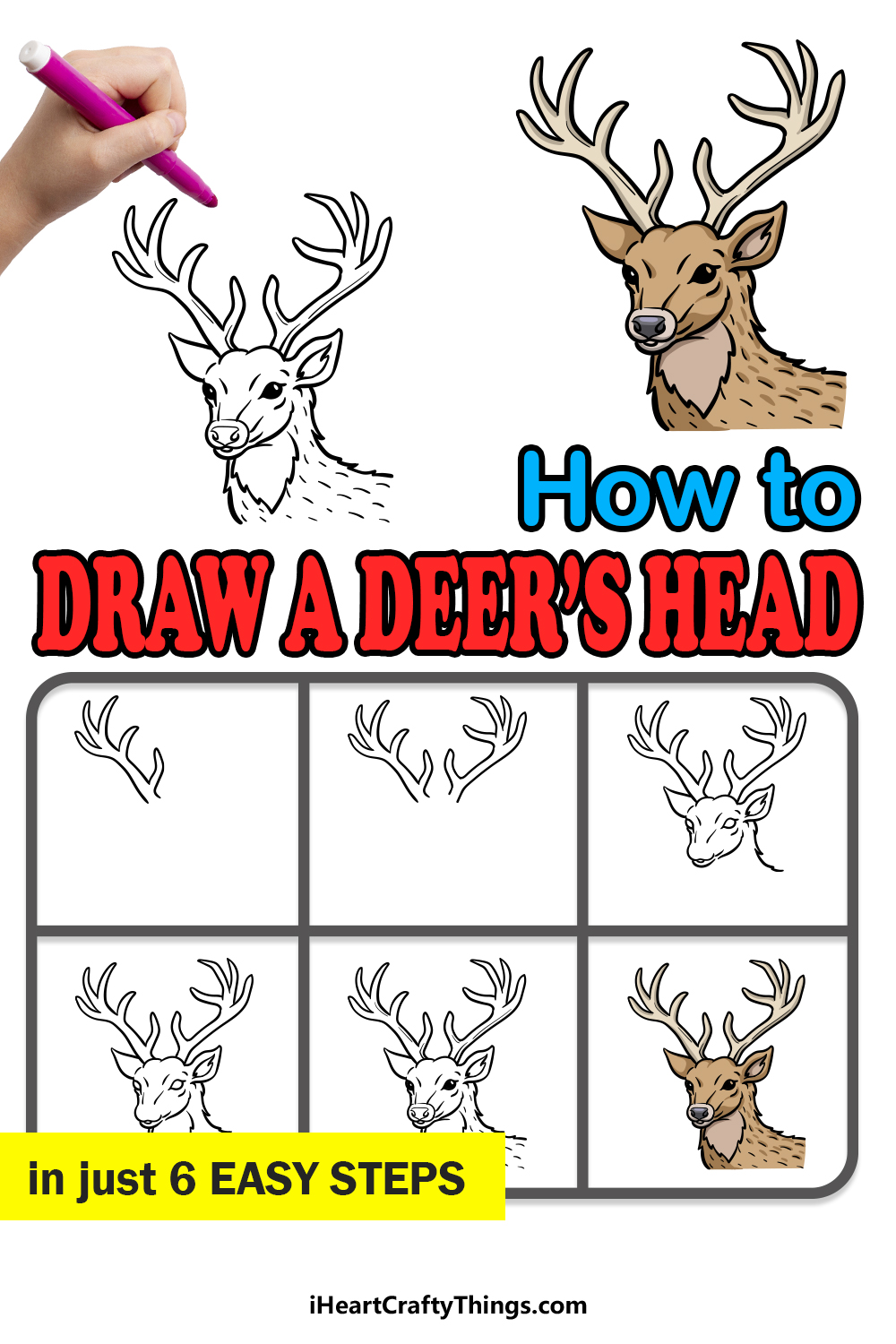 how to draw deer's head in 6 easy steps