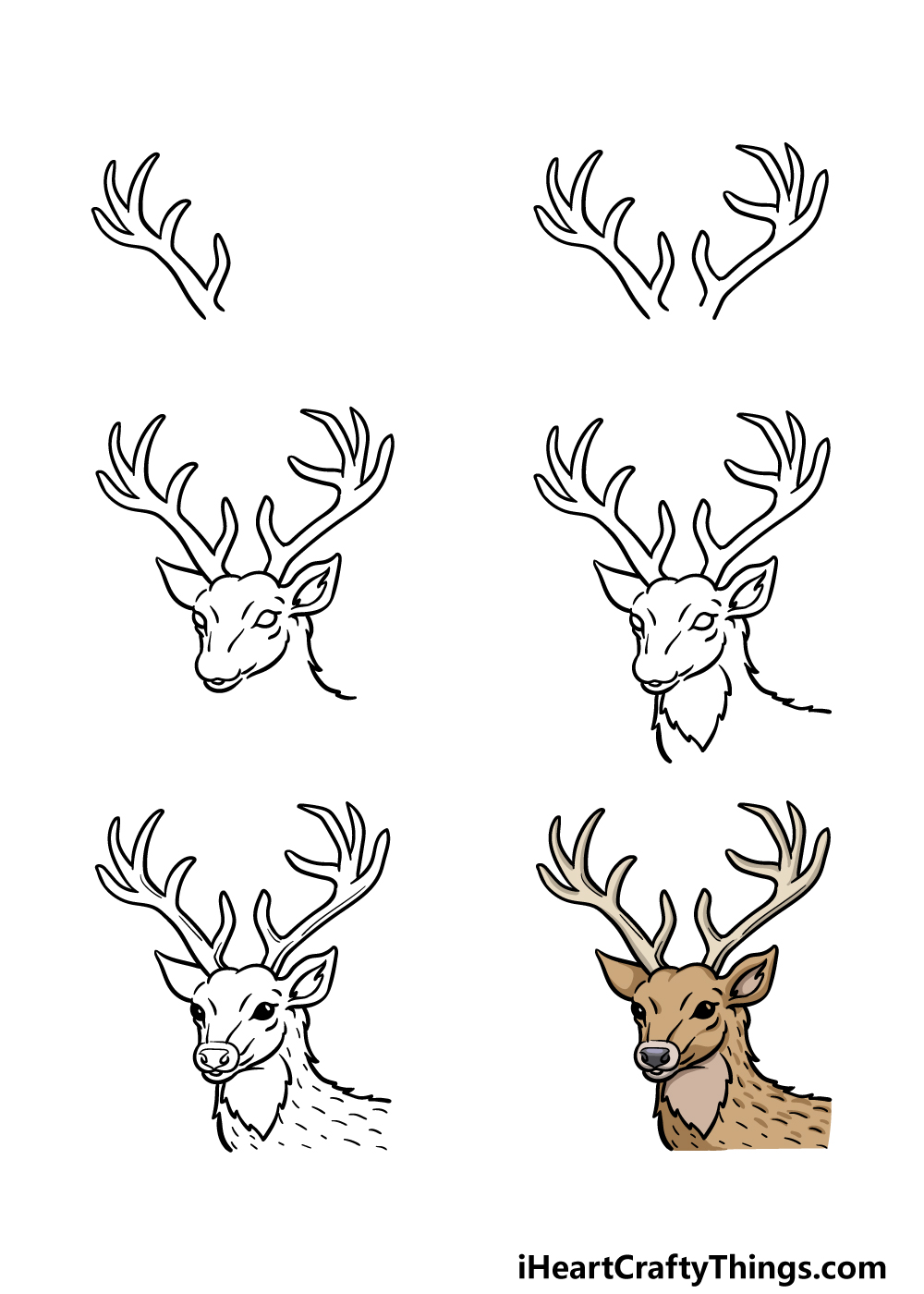 how to draw deer's head in 6 steps