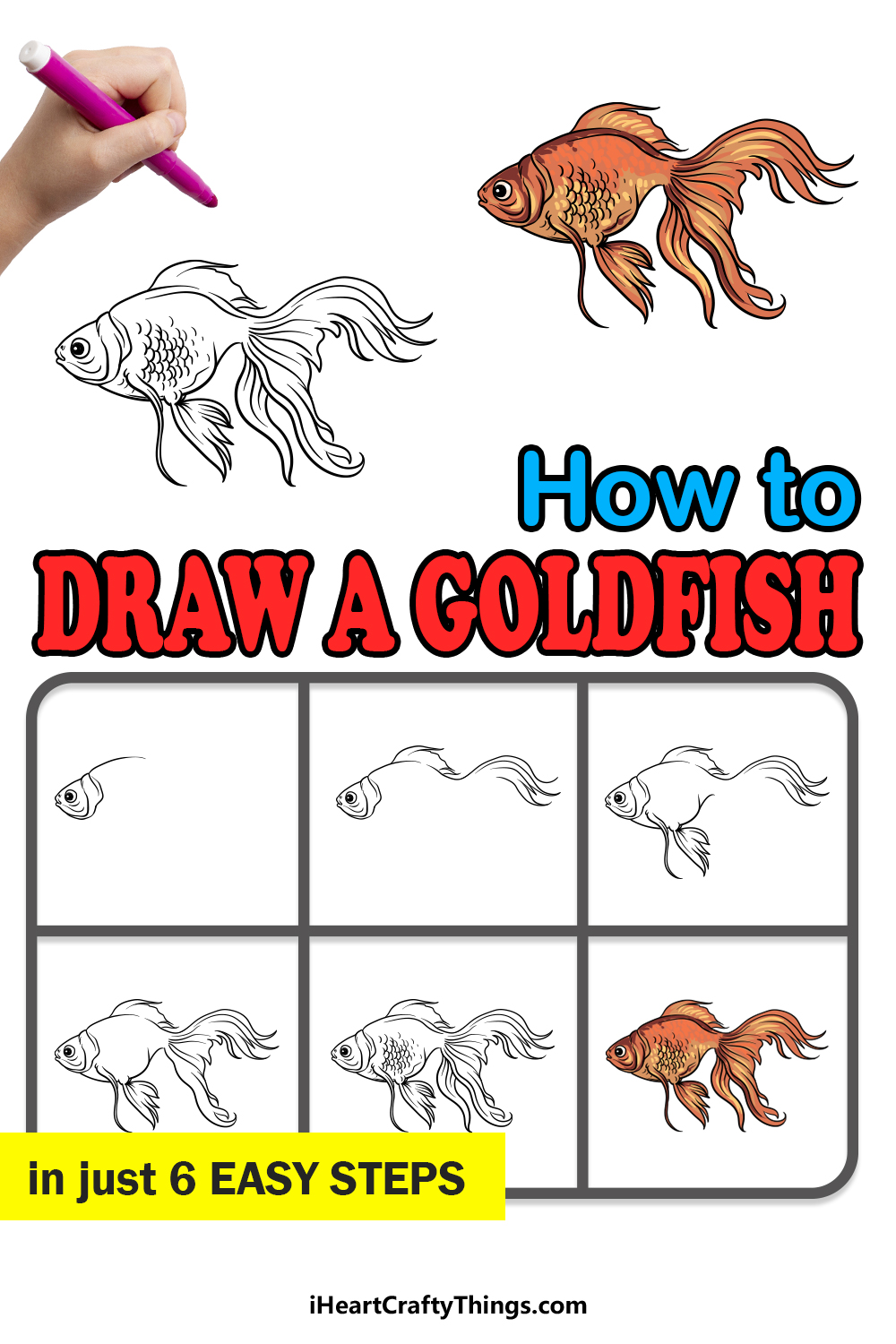 how to draw a goldfish in 6 easy steps