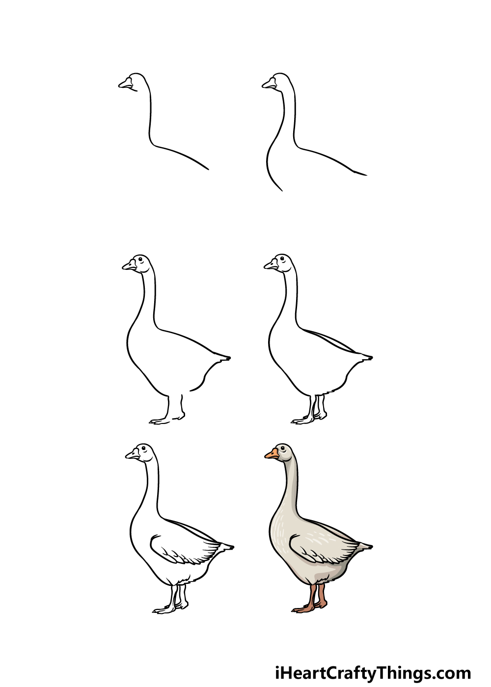 how to draw a goose in 6 steps