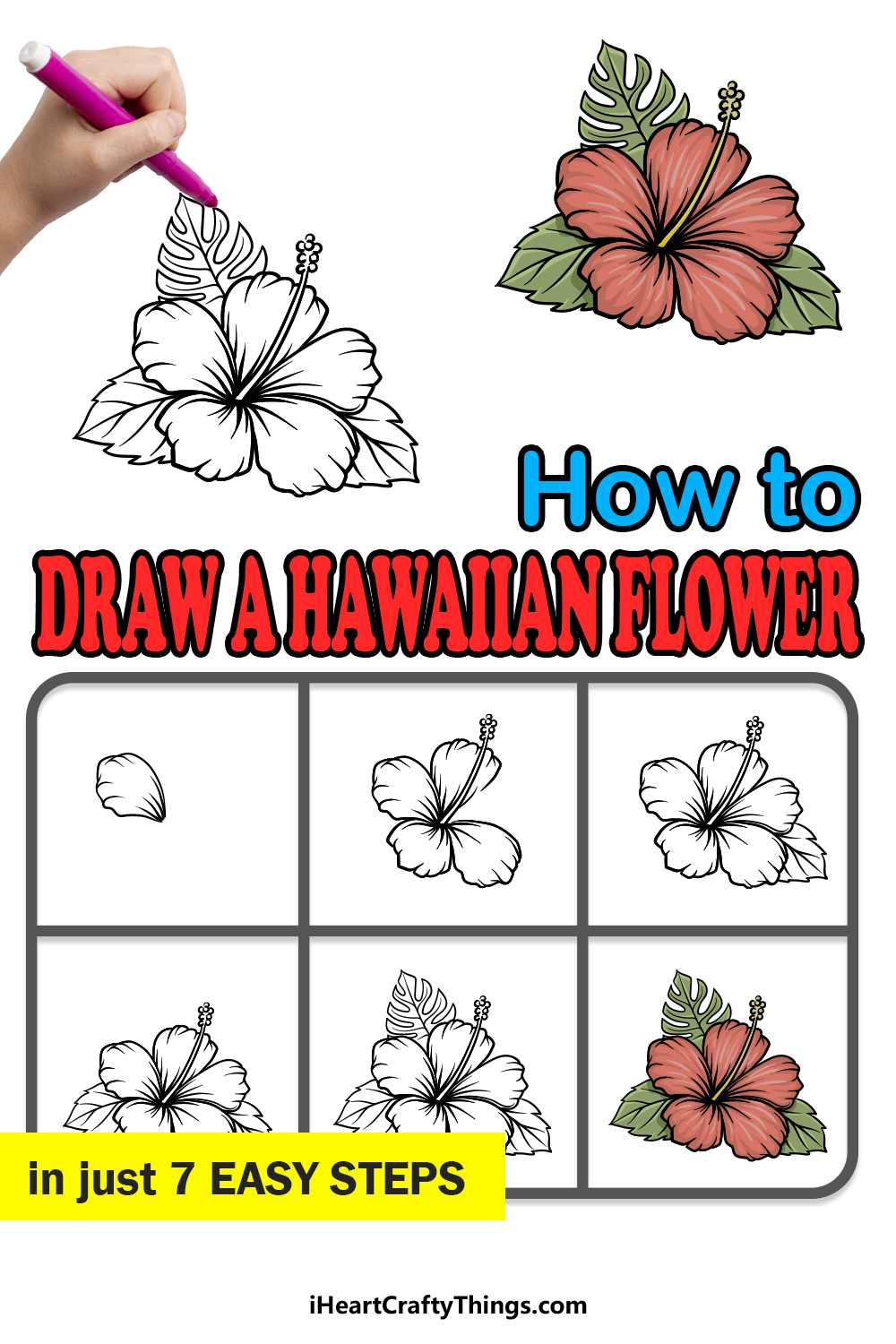 how to draw Hawaiian Flower in 7 easy steps