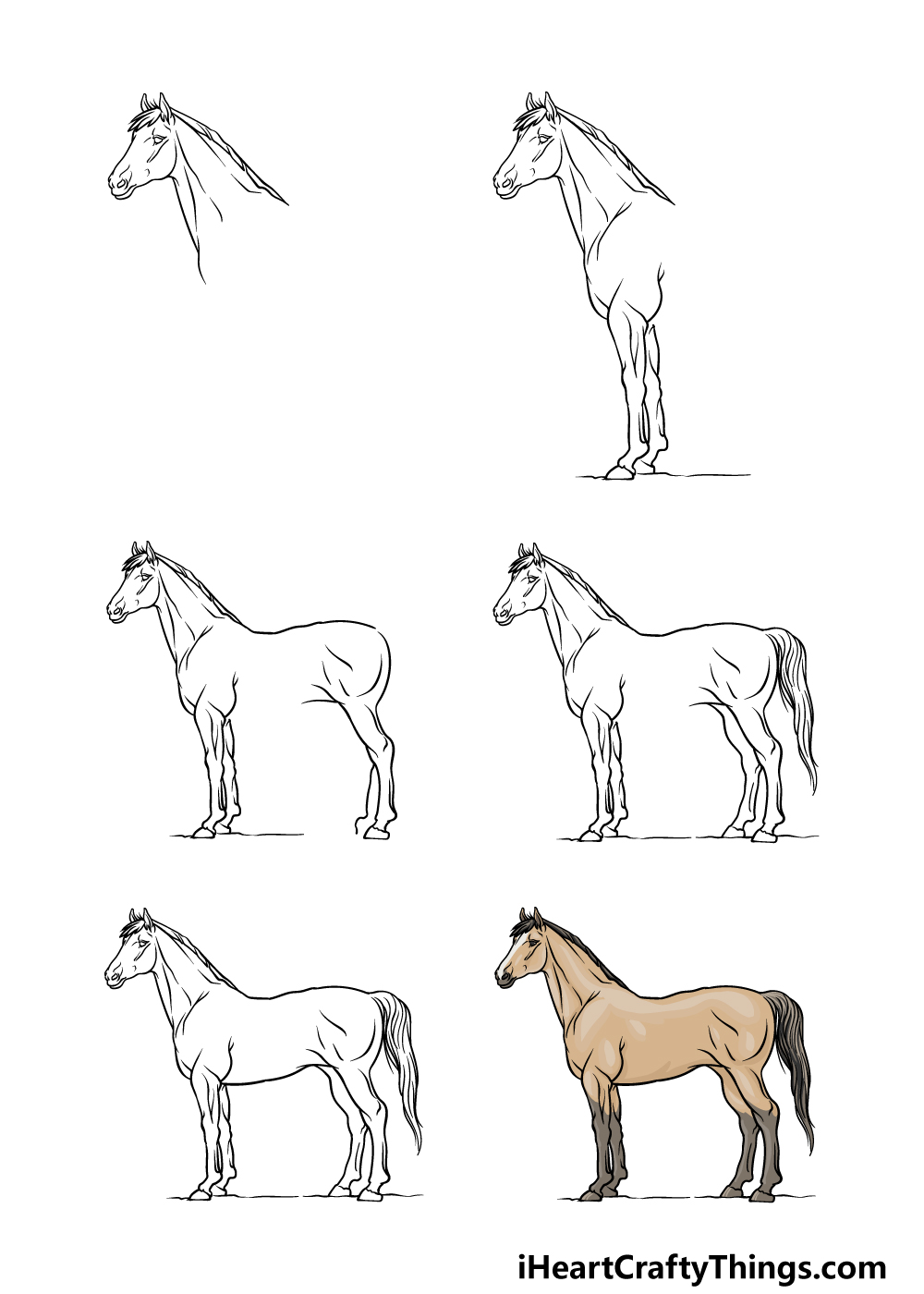 how to draw a horse in 6 steps