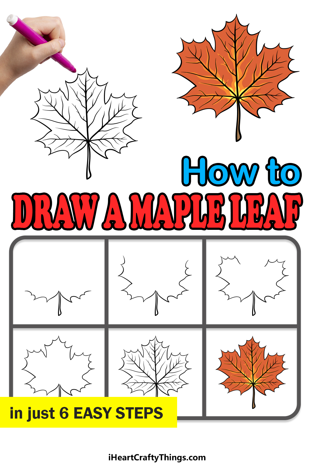 how to draw a maple leaf in 6 easy steps