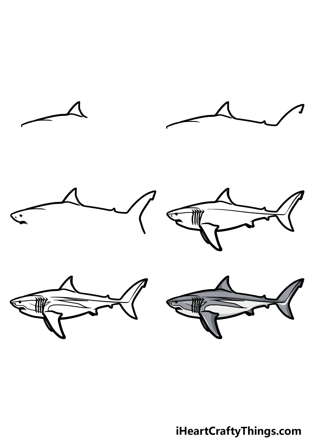 how to draw a megalodon  in 6 steps
