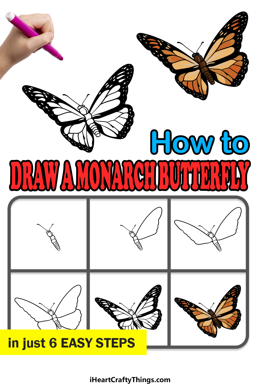 how to draw a Monarch Butterfly in 6 easy steps