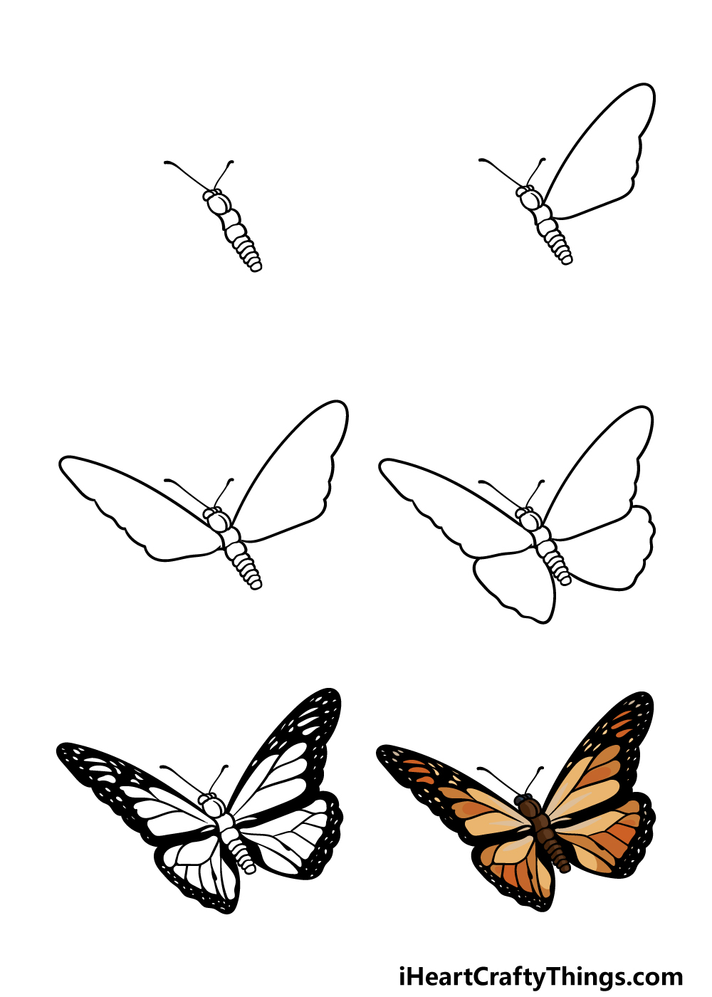 How To Draw A Monarch Butterfly in 6 steps