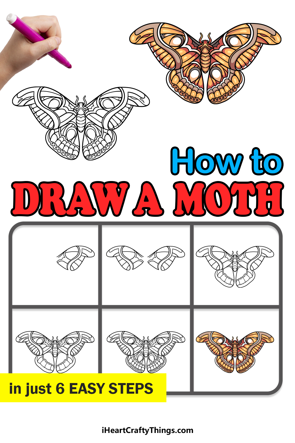how to draw a moth in 6 easy steps
