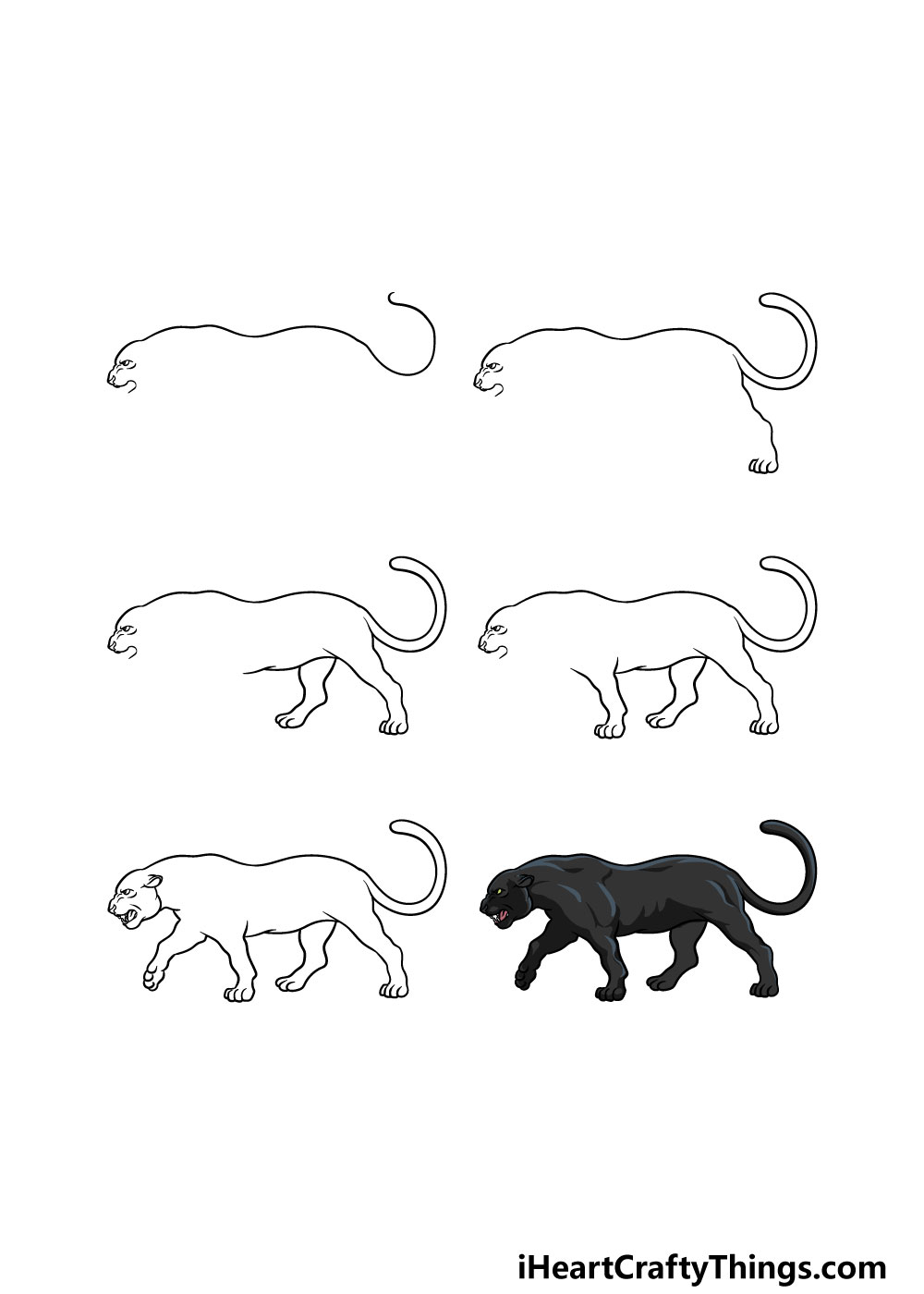 how to draw a panther in 6 steps