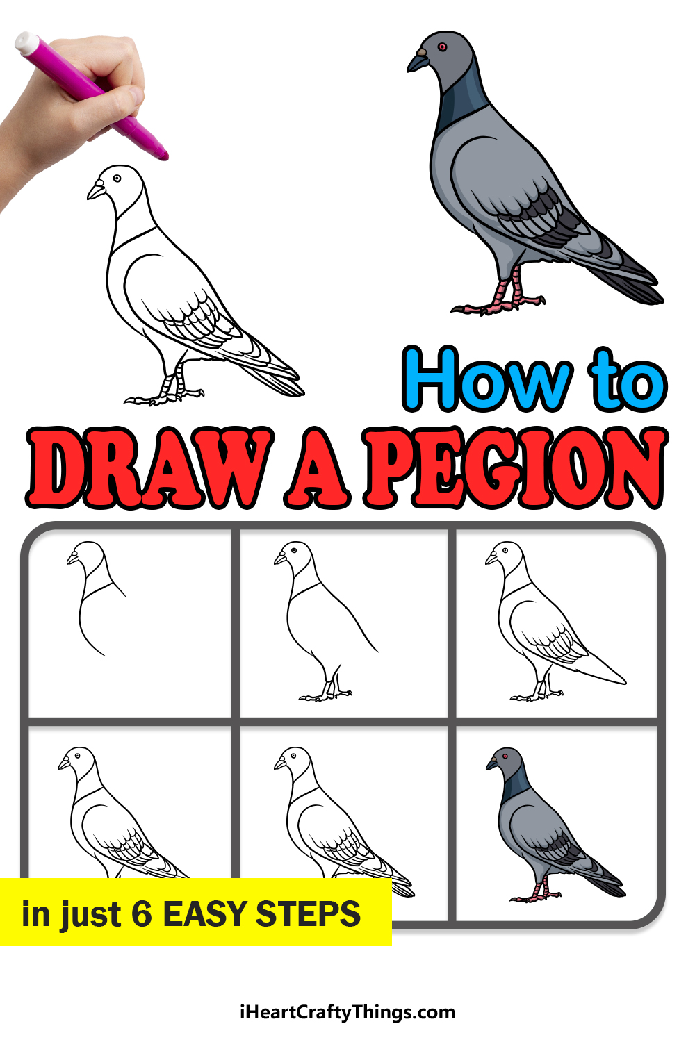 how to draw a pigeon in 6 easy steps